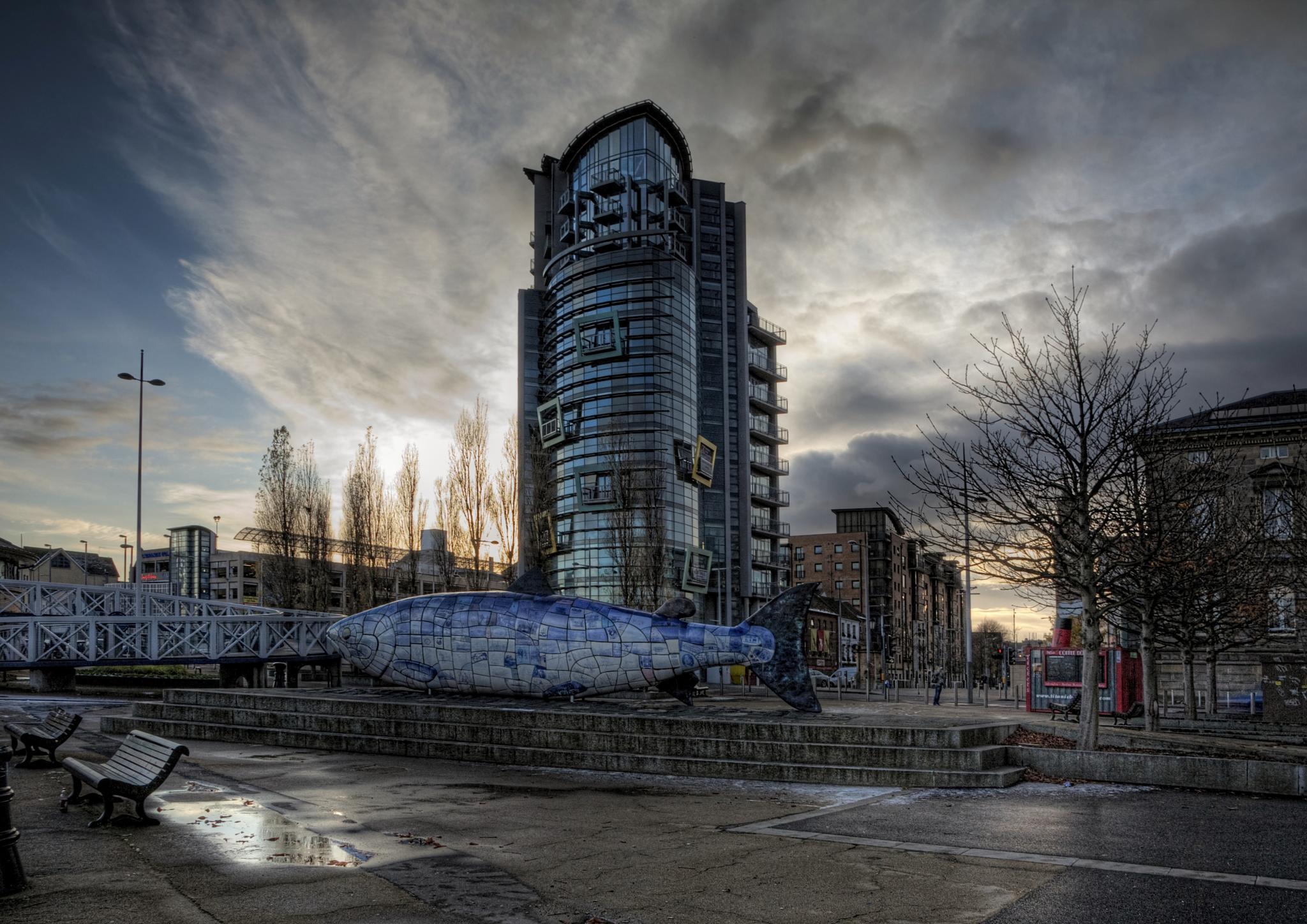 Big Fish by Peter Ellison