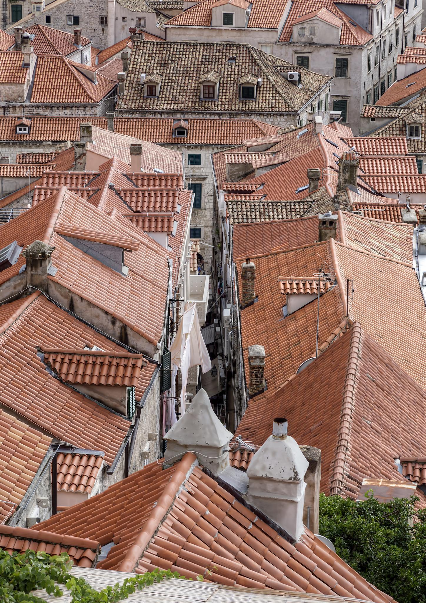 Rooftops by Peter Ellison