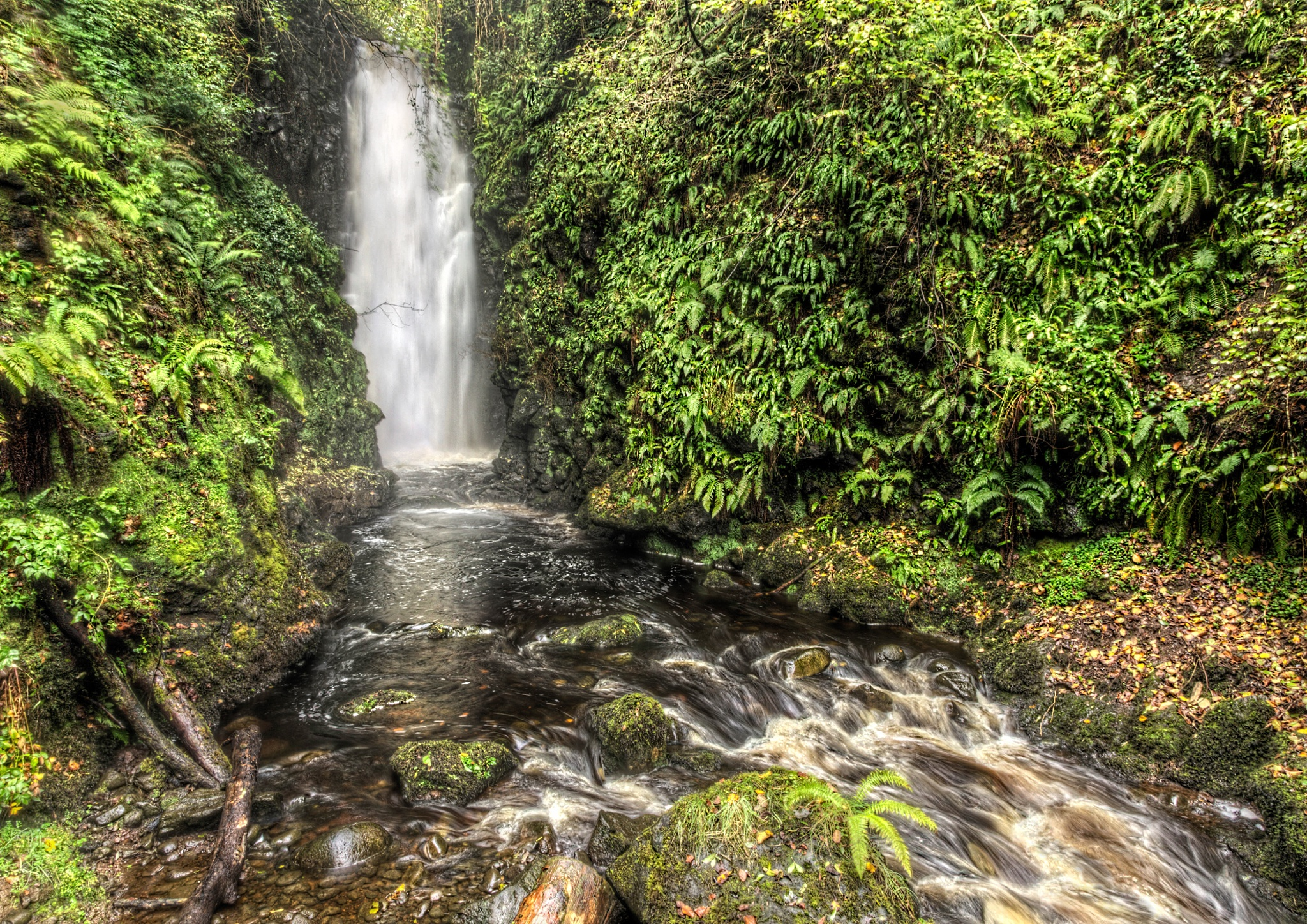 Cranny Falls near Carnlough. by Peter Ellison