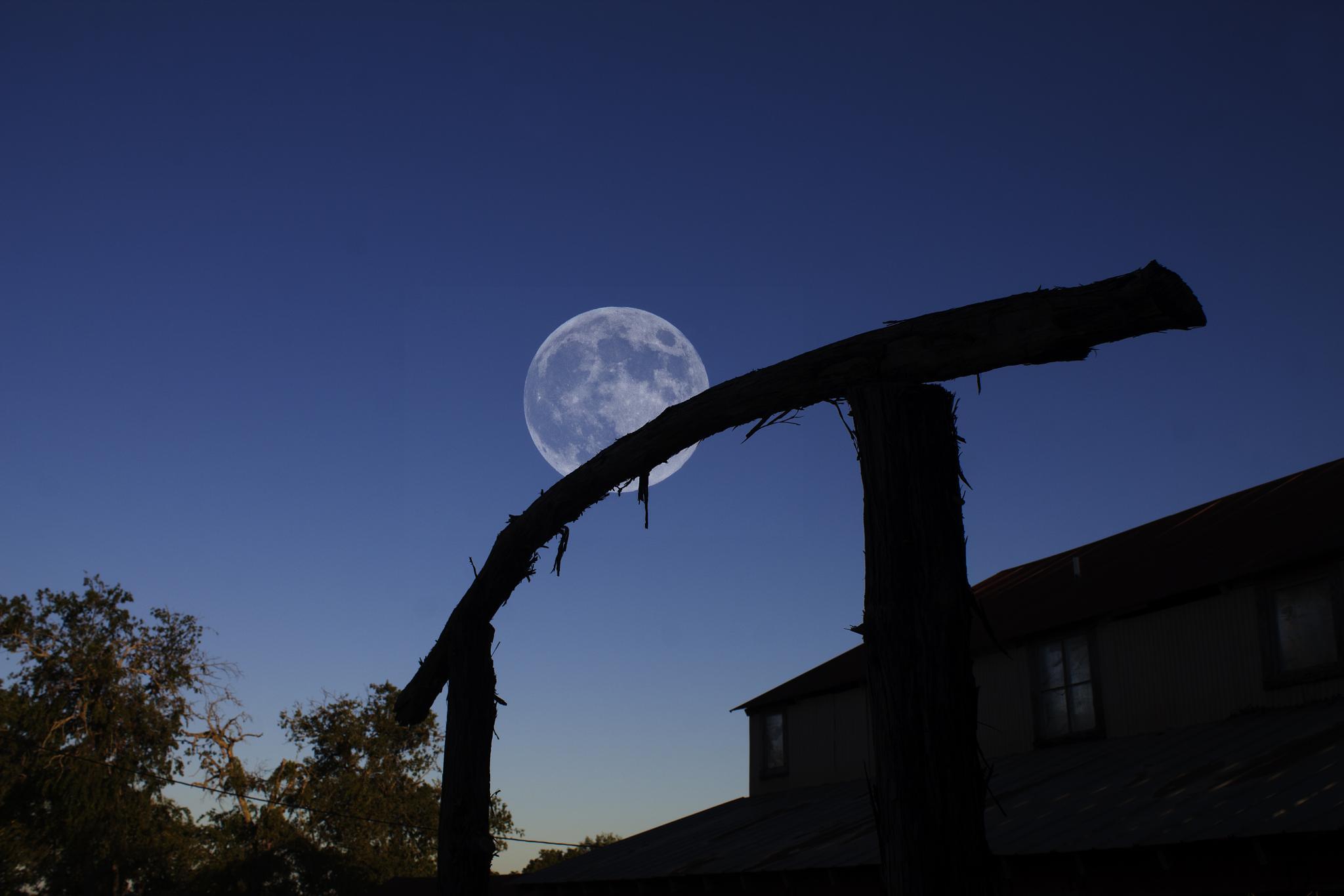 Tejas Super Moon by Ron Pierce
