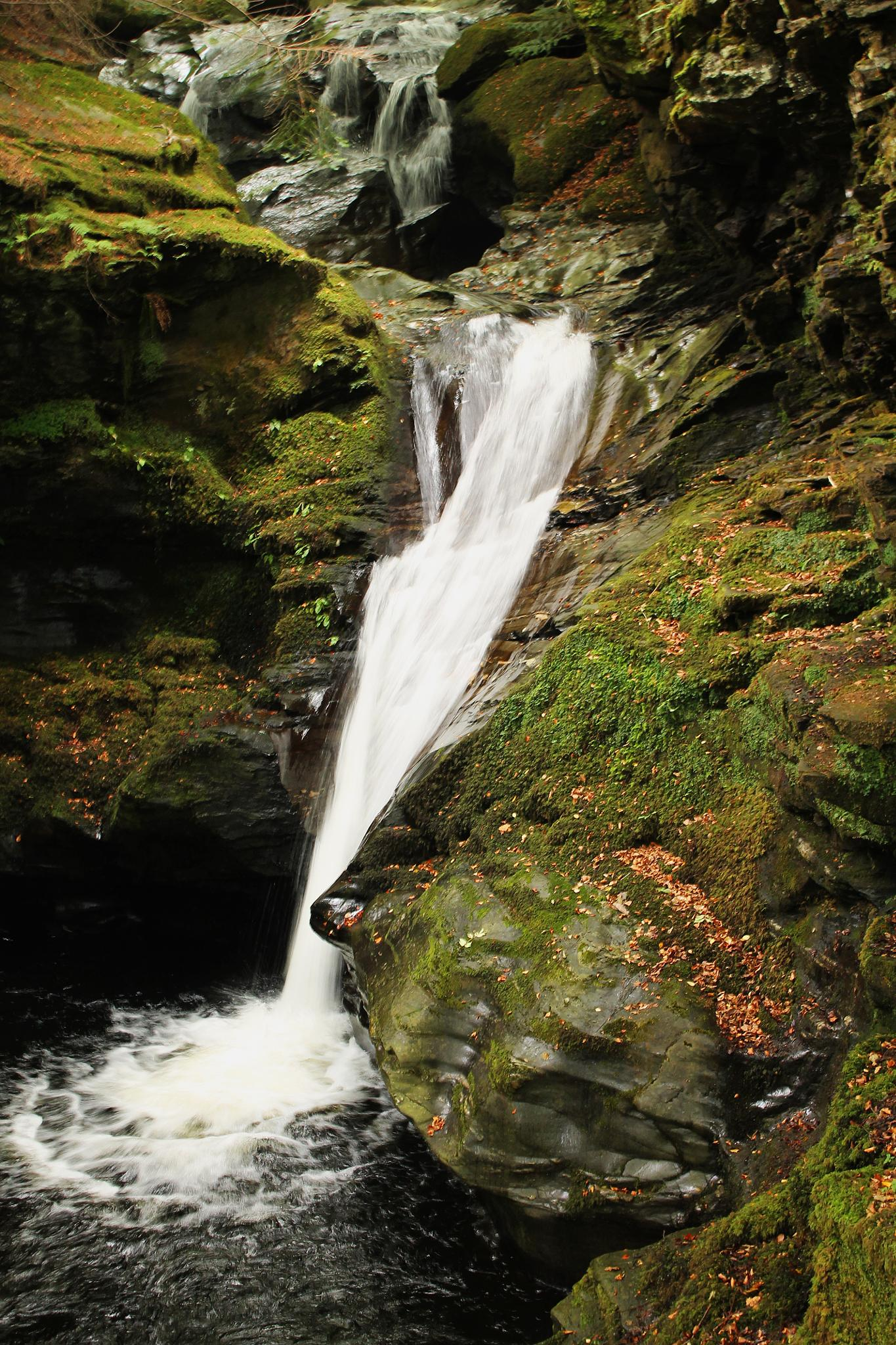 Slow Shutter Waterfall by Steven Ritchie