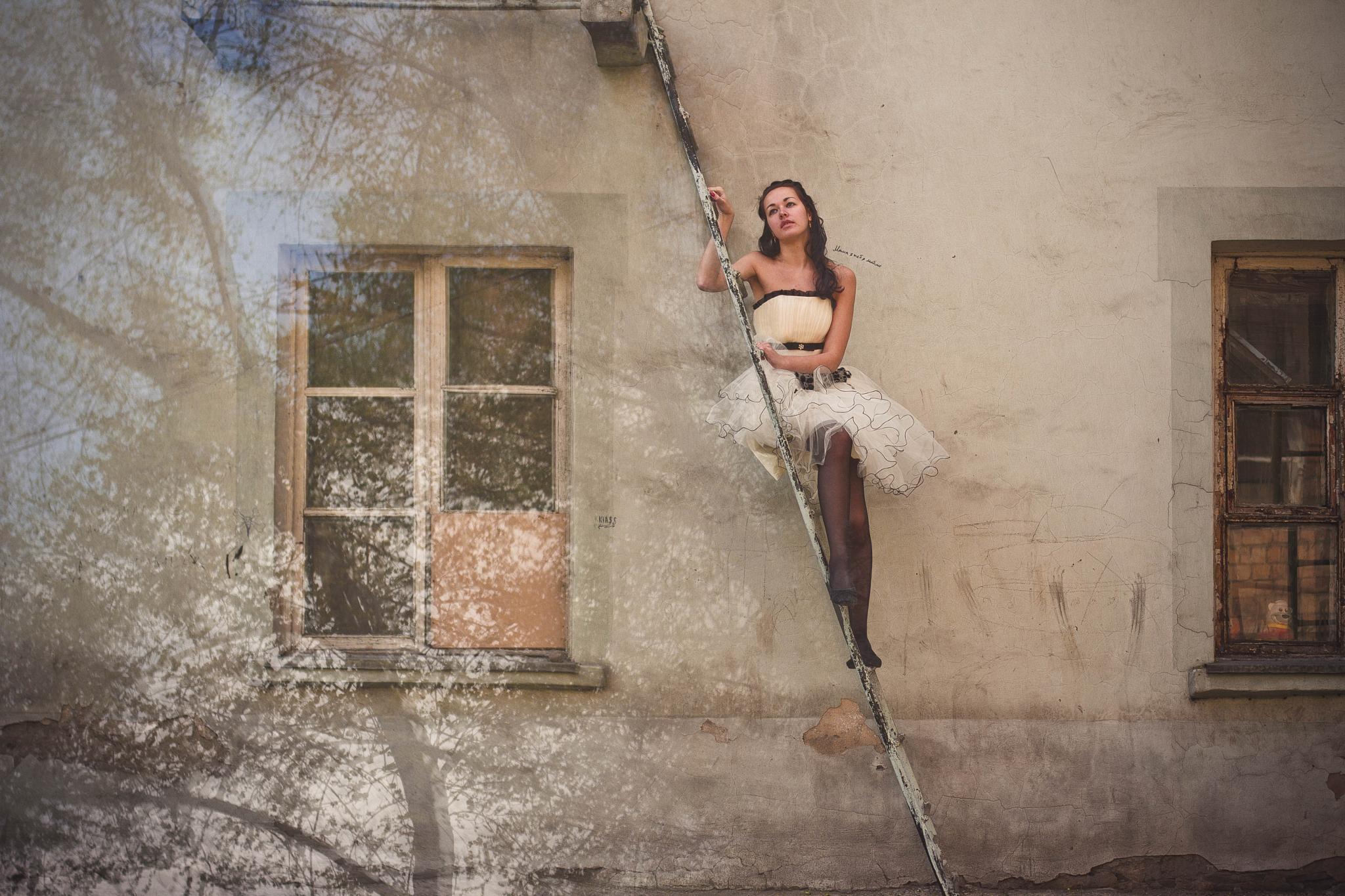 Dream by Janin Reifer