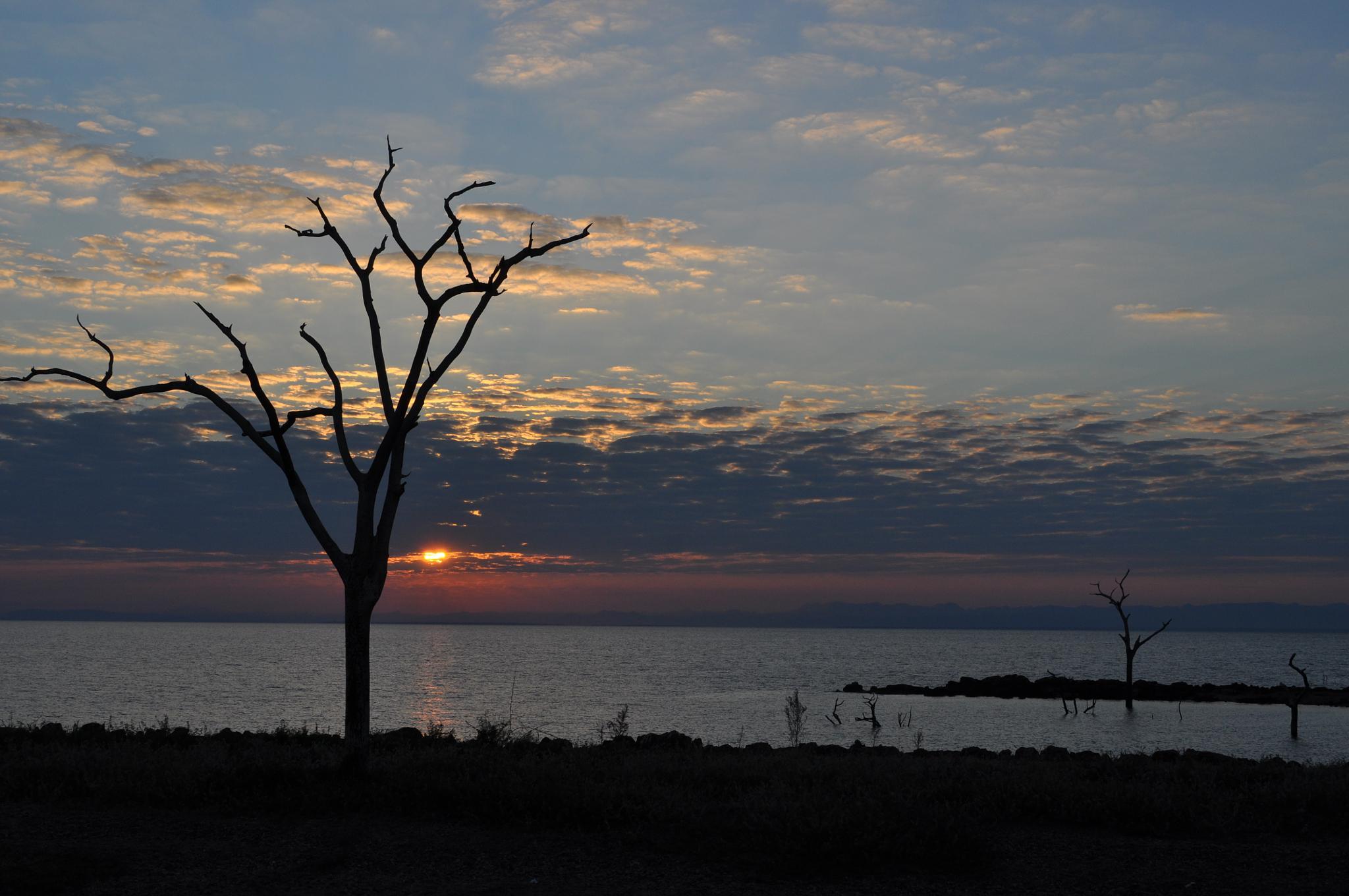 Sunrise, Lake Kariba by Ian Harvey-Brown