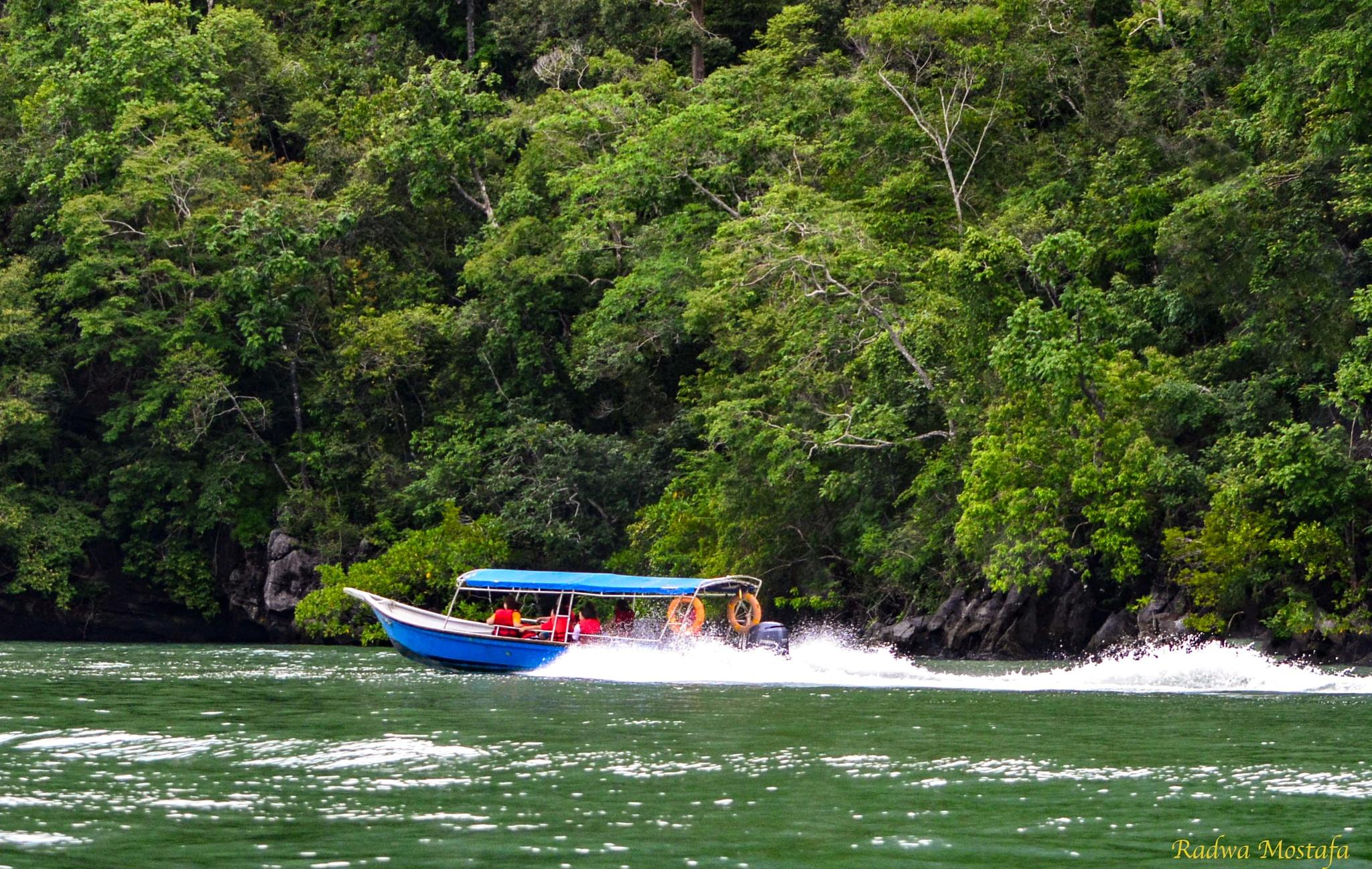 Speedboat ride in Langkawi between mountains by RadwaMostafa