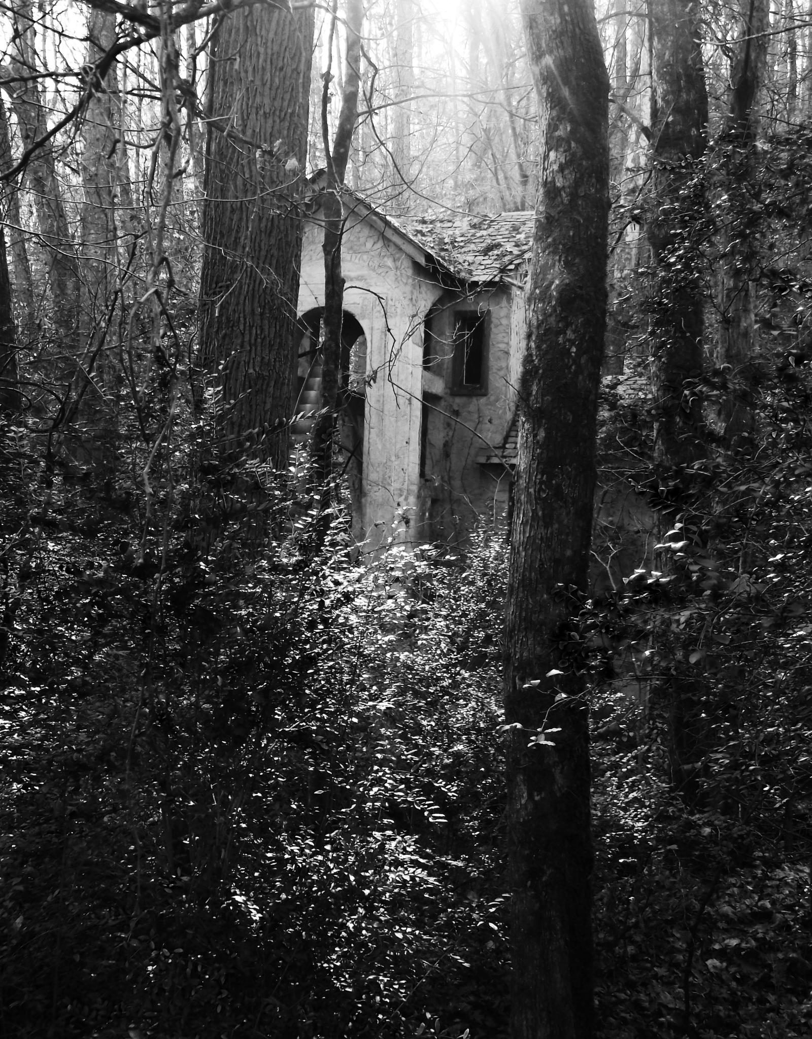 Tucked Away by Byrd's Eye Photography