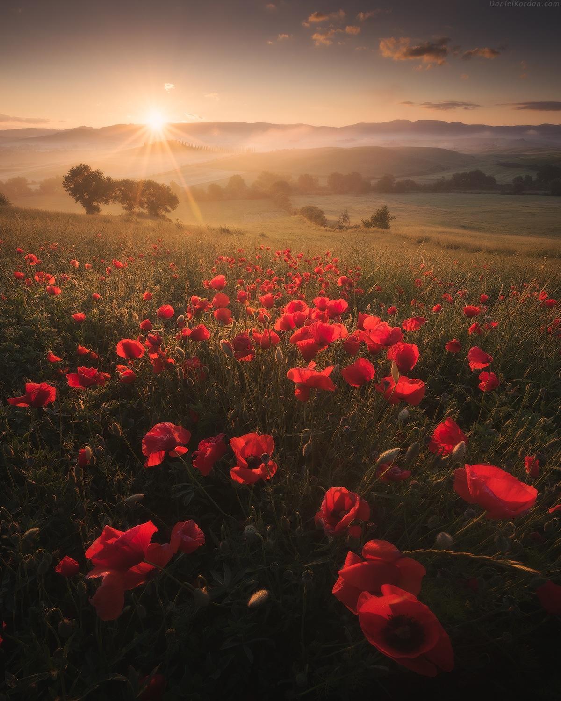 Tuscany by Daniel Kordan