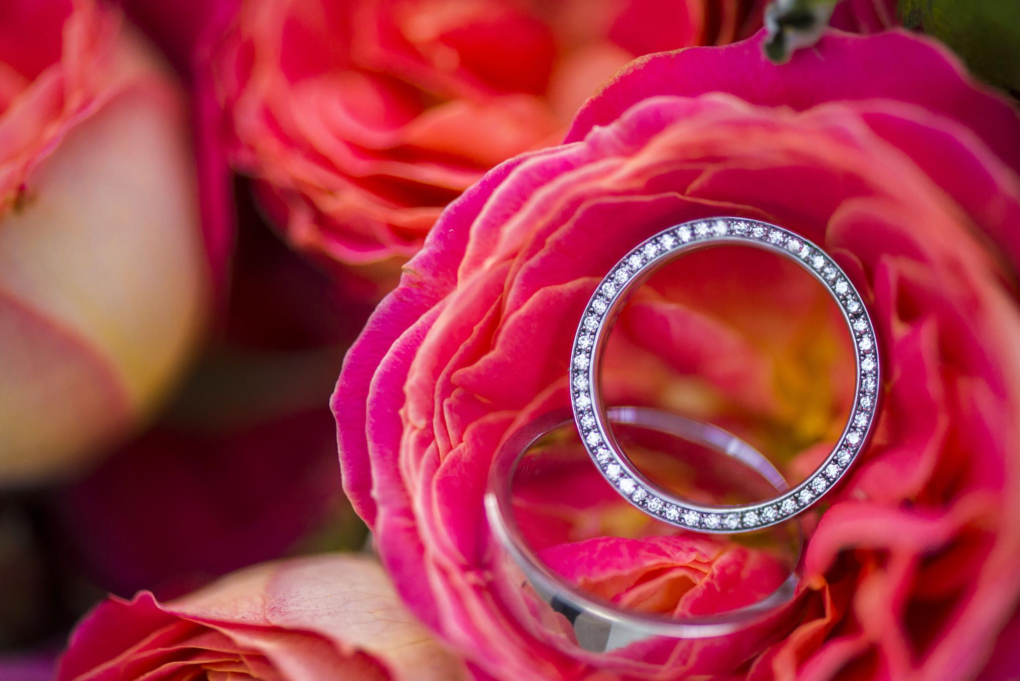 Wedding Ring by Isabela Campos-Scheffel