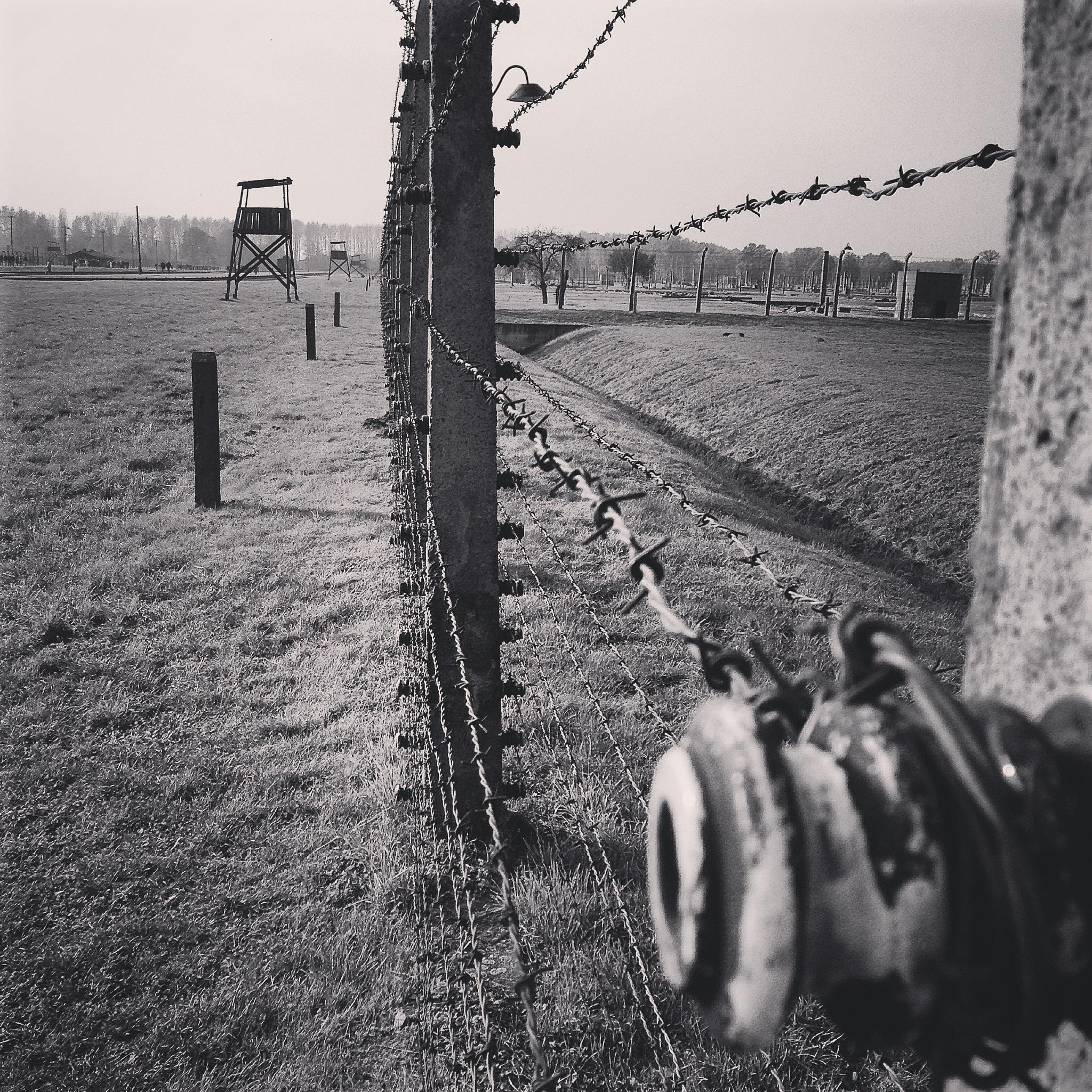 Fences of tragedy by Thomas Ryste