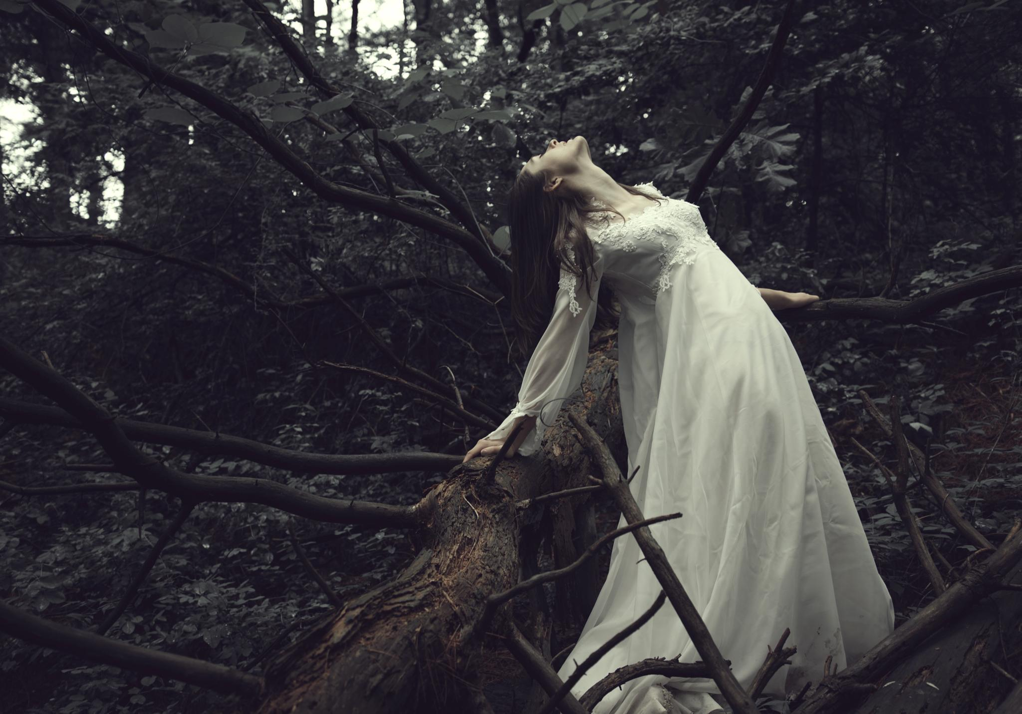 Forest Wed by SamanthaPugsley