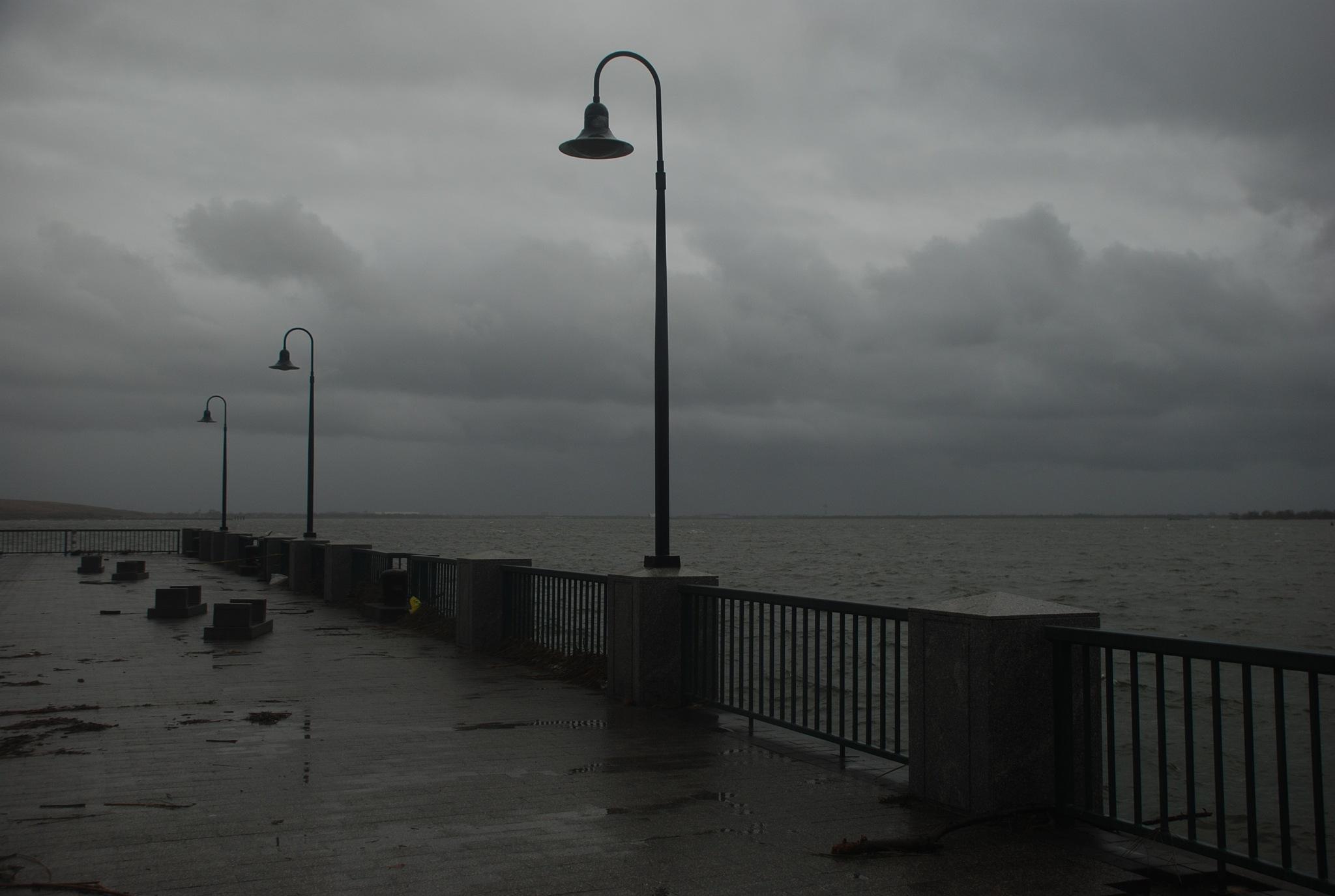 Storm Sandy by Pamela Yard