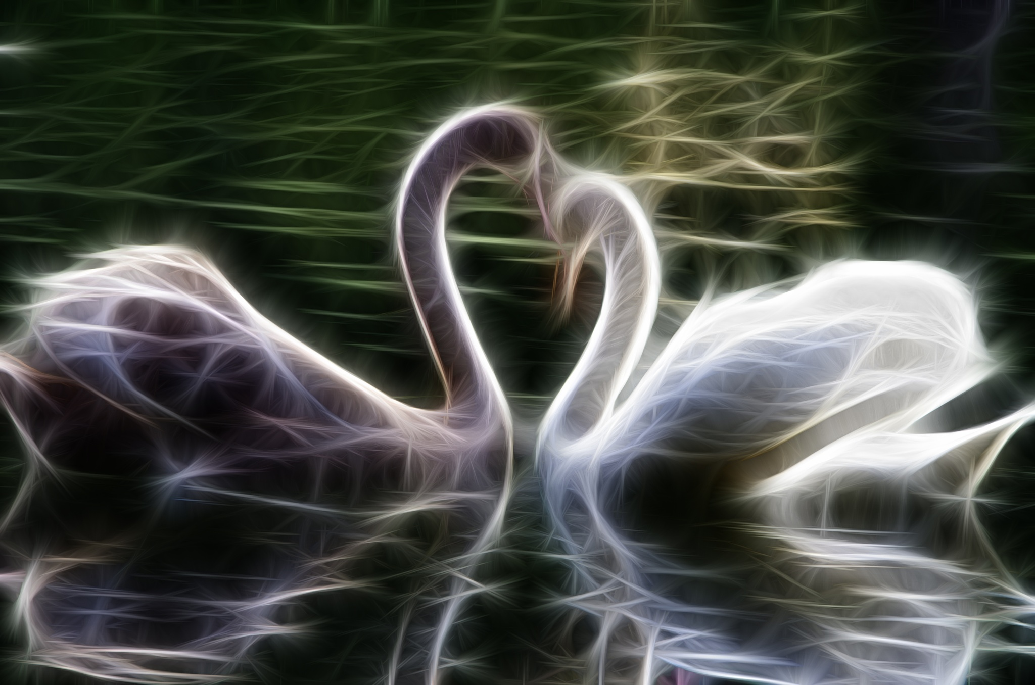 with love by PetarBoskovski