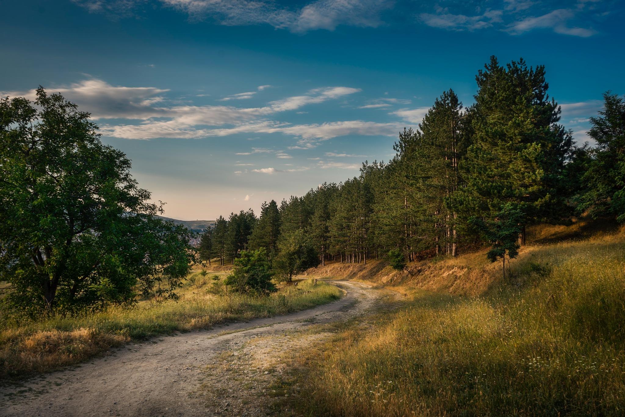 S road by PetarBoskovski