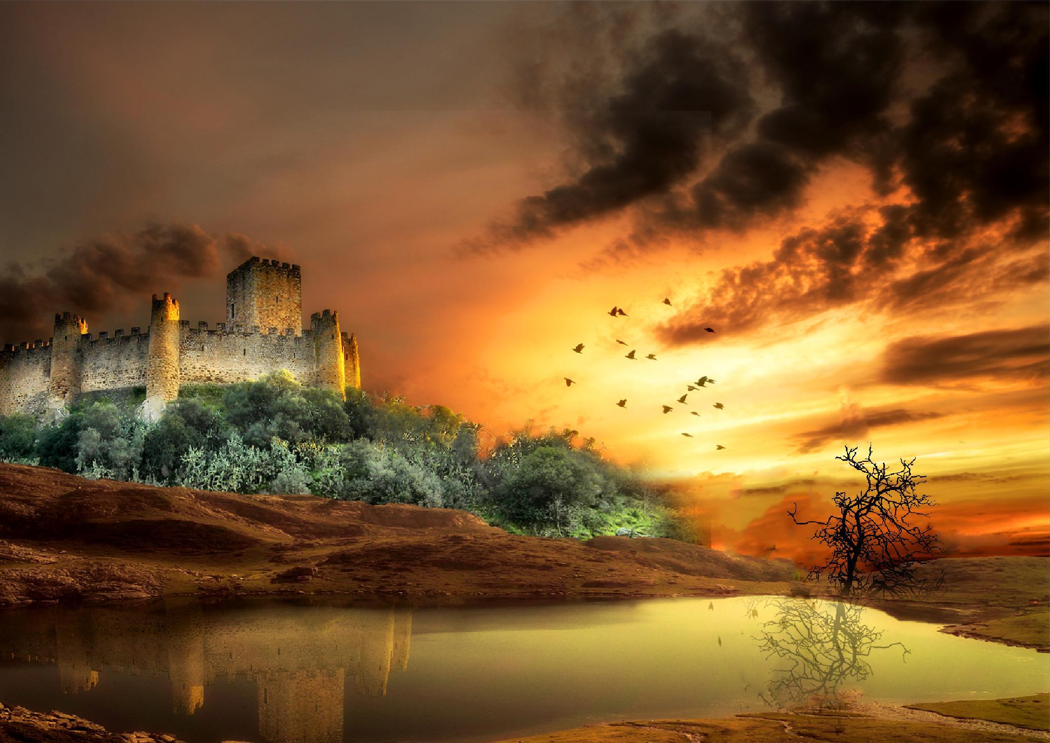 Castillo by toalafoto