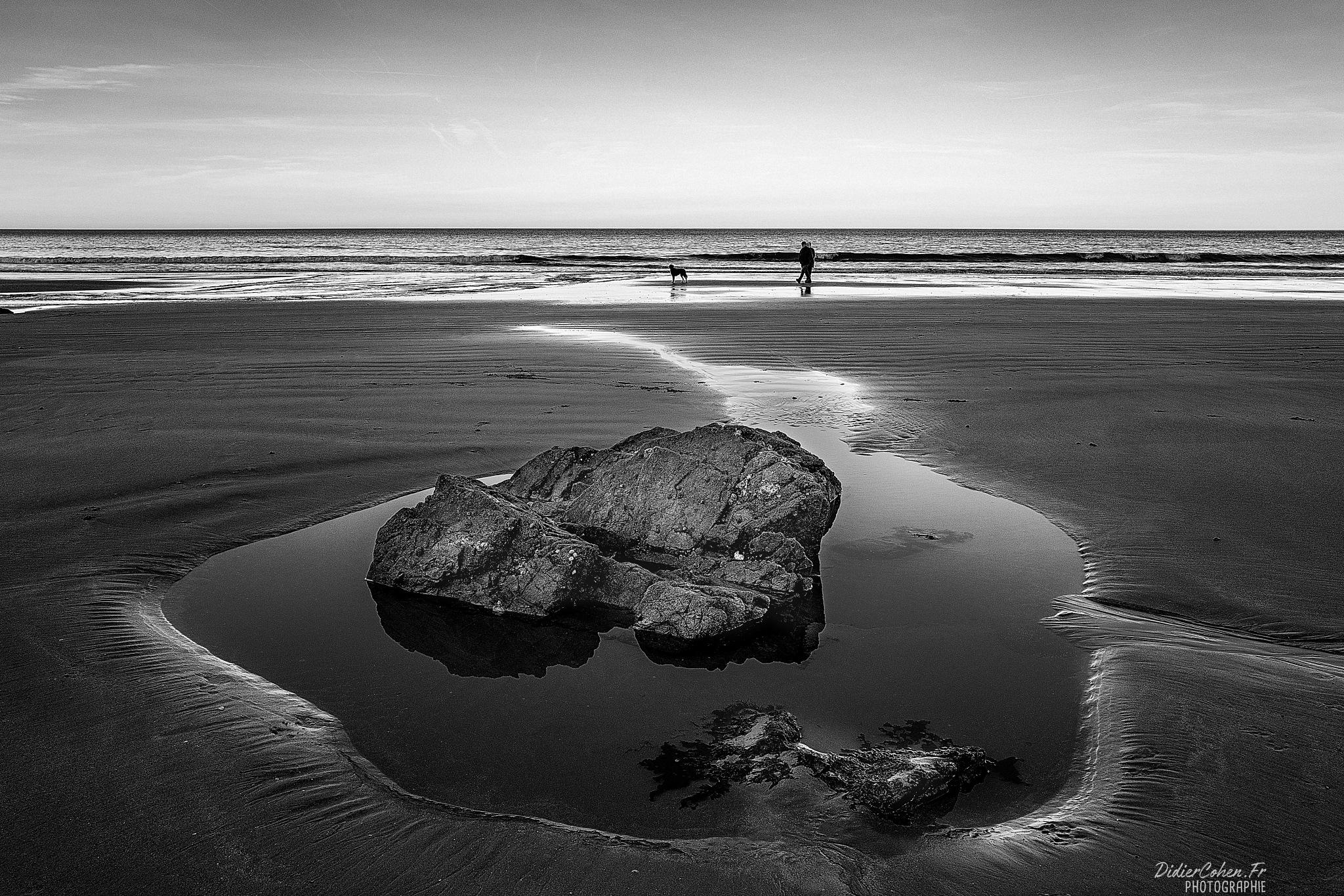 PLAGE BONAPARTE/BRETAGNE/FRANCE by Didier Cohen