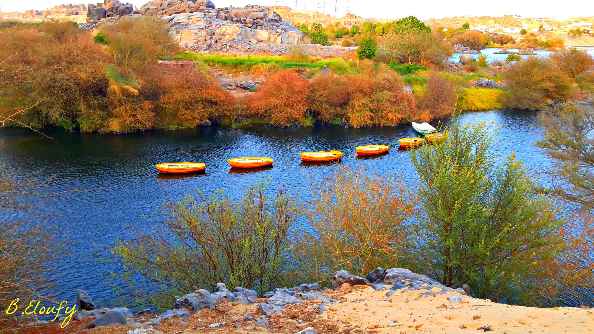 little boats  by BasmaEloufy