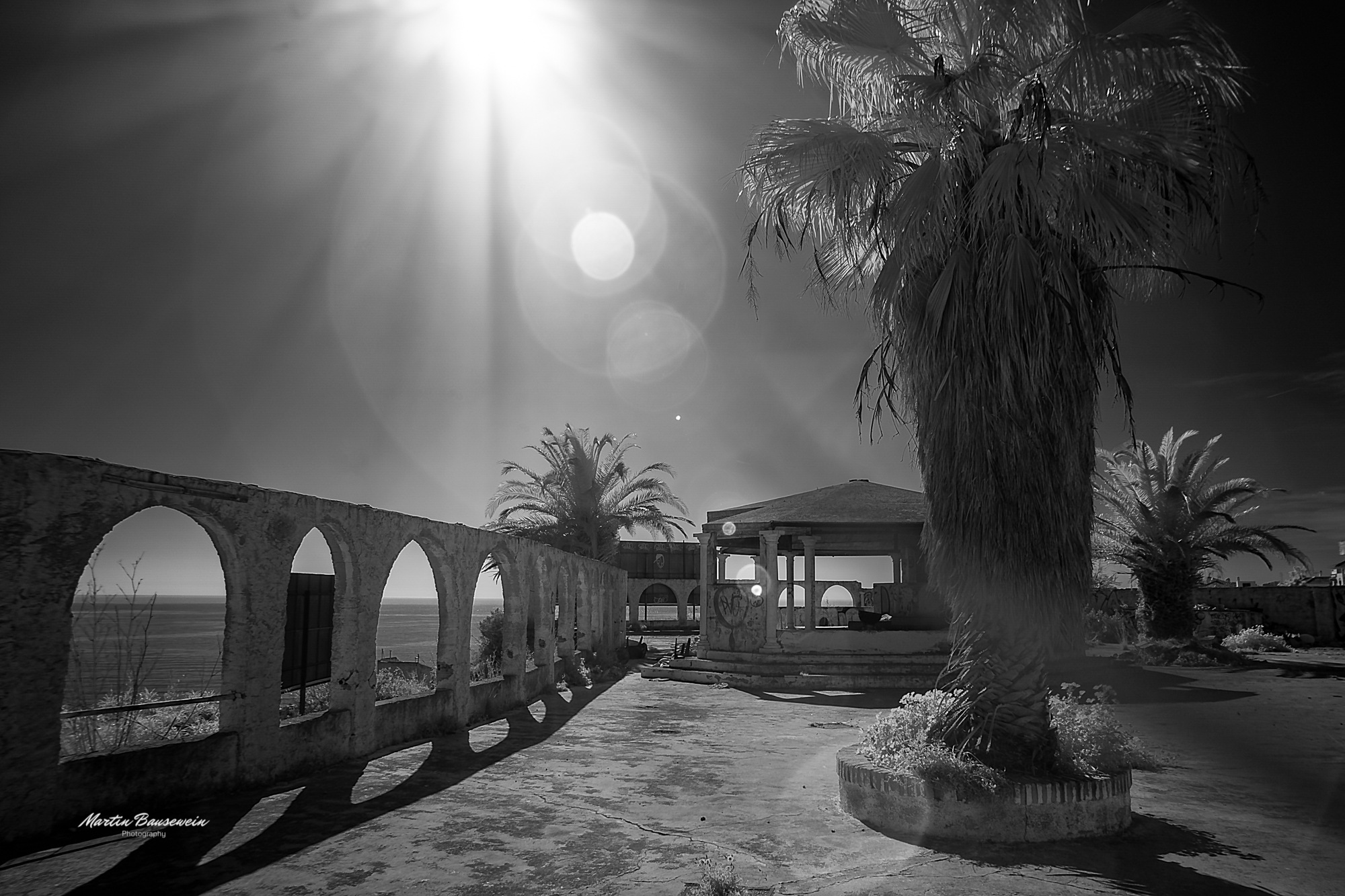 Photo in Black and White #terrace #abandoned #old #decay #lost place #urbex #urban exploration #sun #sunshine #palm #sky #ocean #sea #outdoor #infrared #black and white #2019