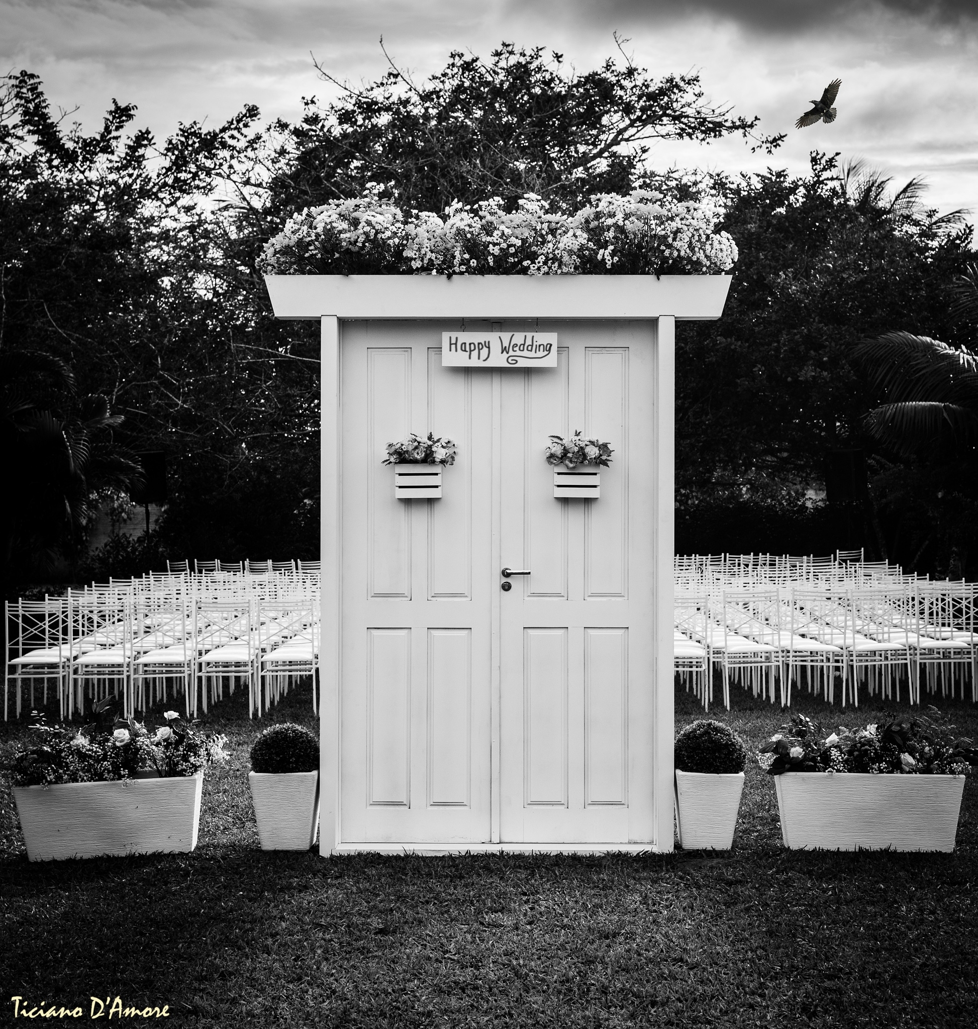 Cursed Wedding by damoreticiano