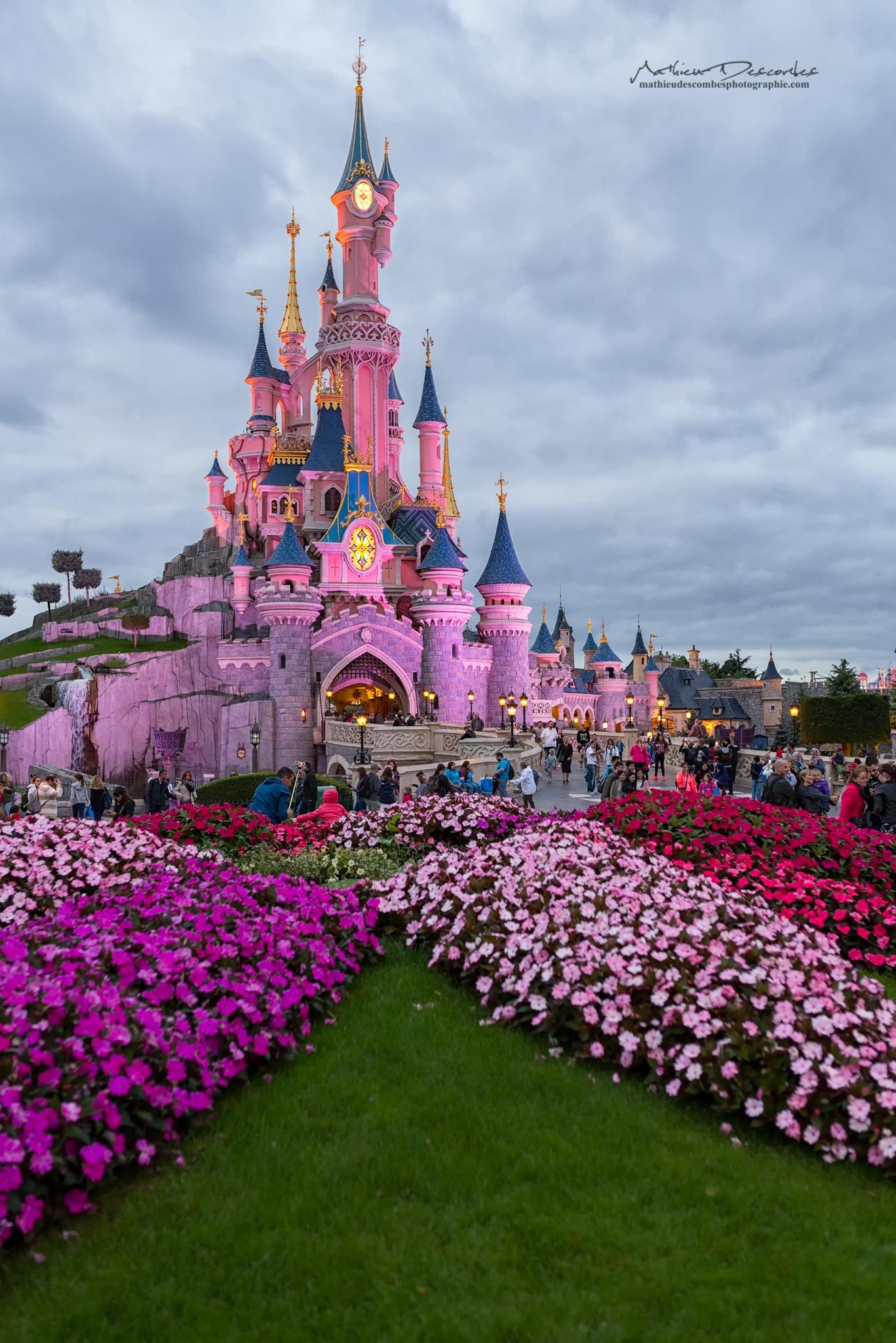 Disney by Mathieu Descombes Photographie