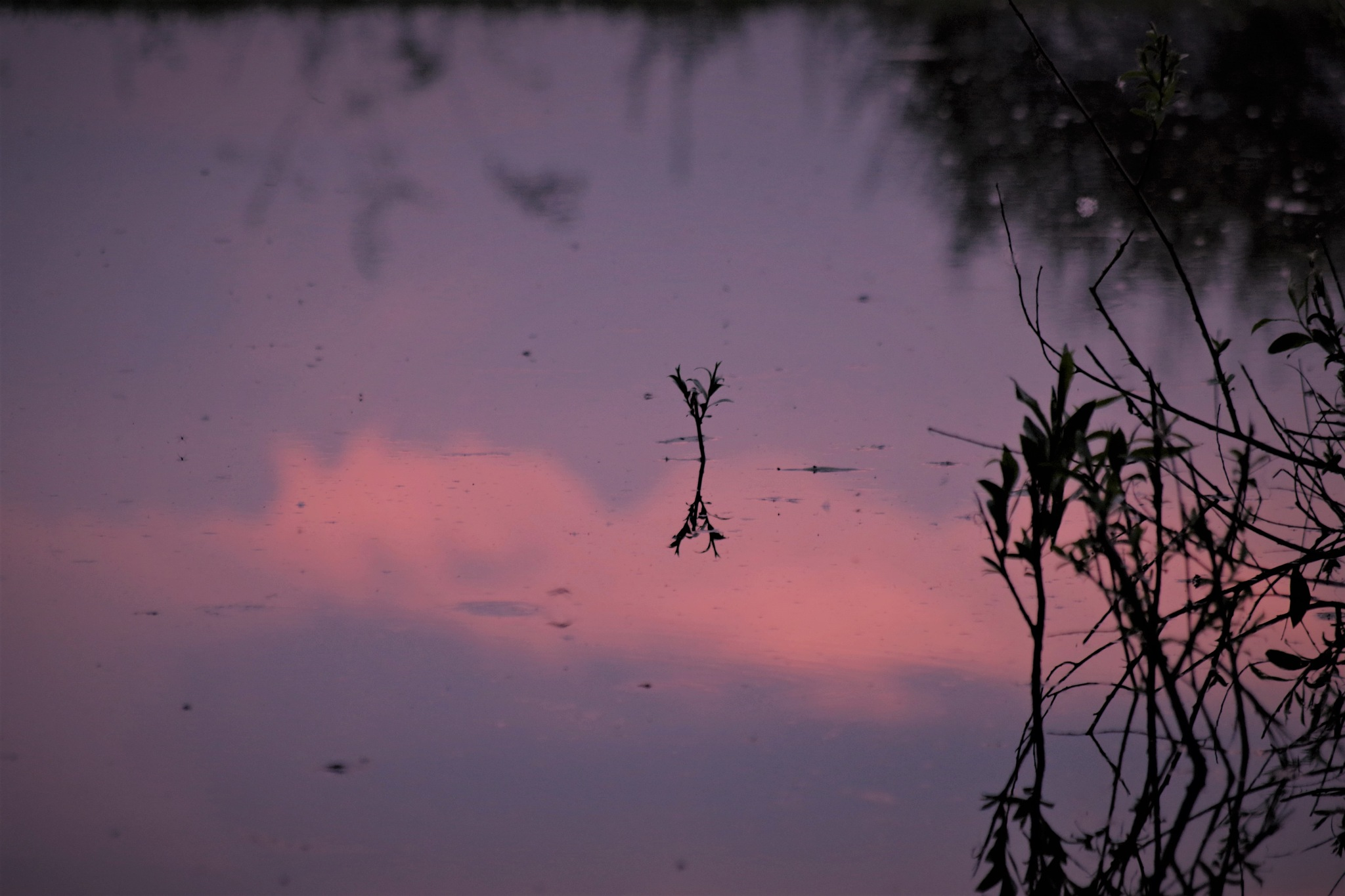 evening reflection by Heike  Block