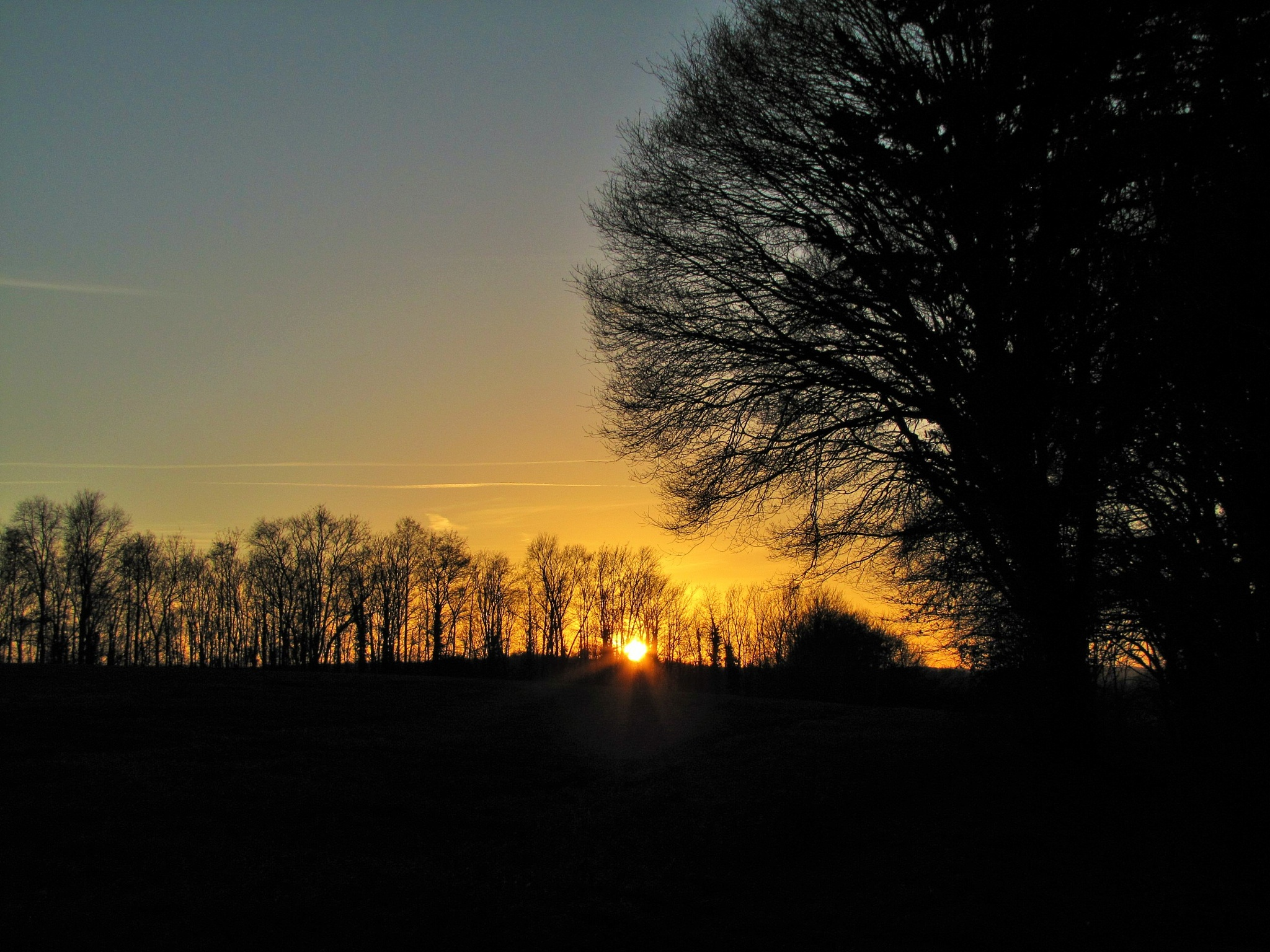 Photo in Landscape #sunset #landscape #mood #trees #winter #sundown #forest #rural #nature
