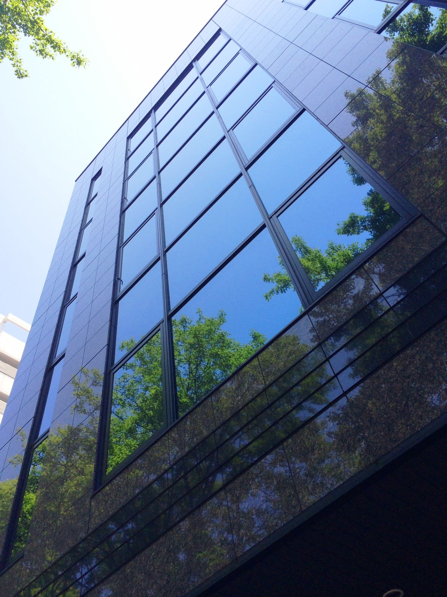 Forest Building by Manabu Moriwaki
