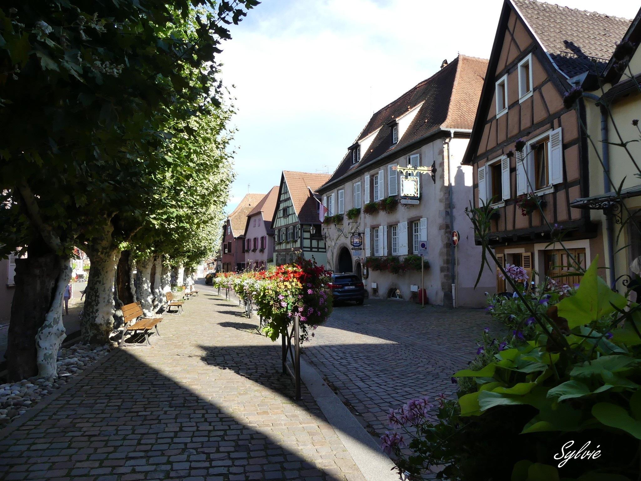Bergheim by Newsyl