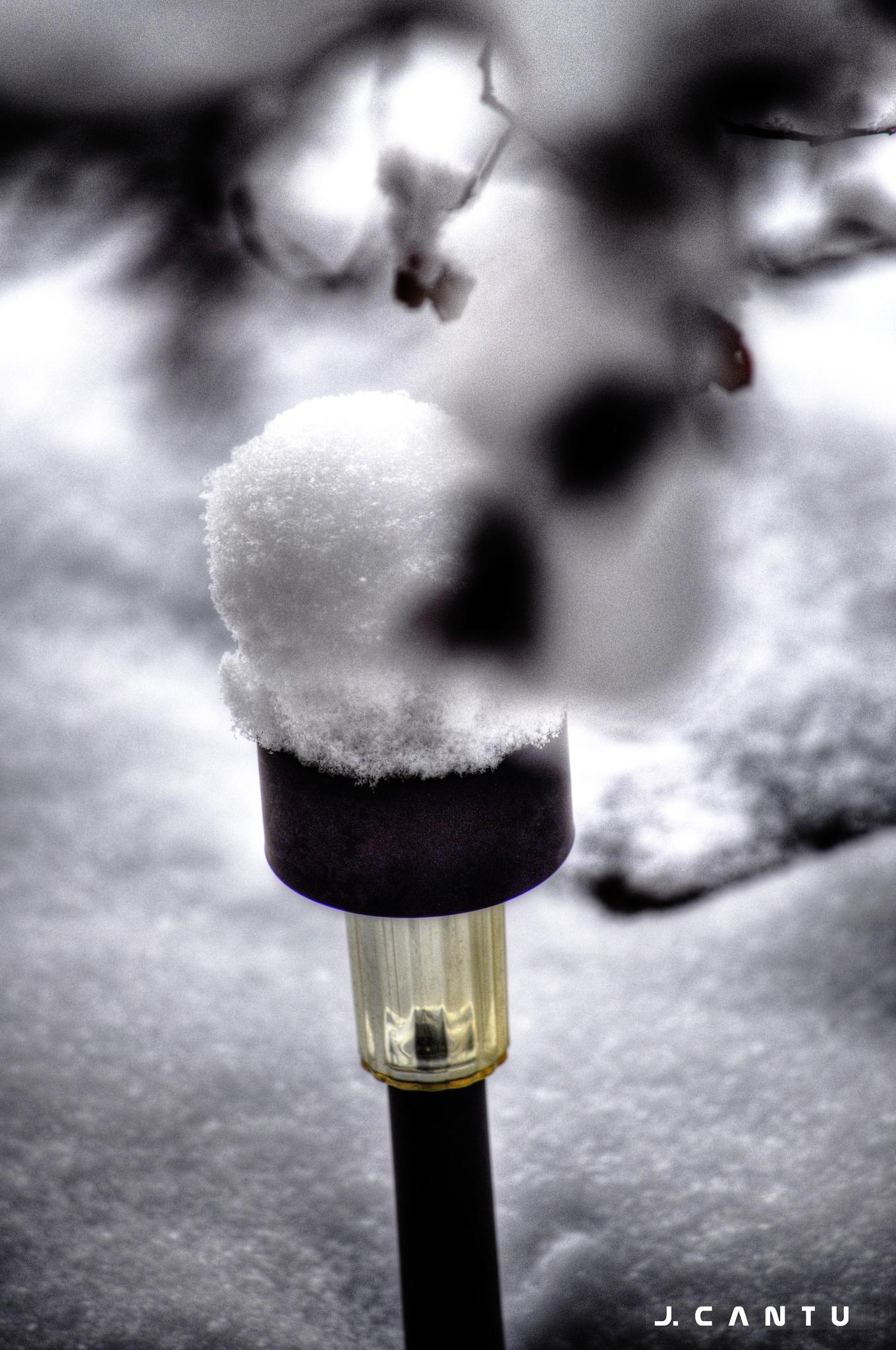 Snowy Light................................... by Jaime Cantu
