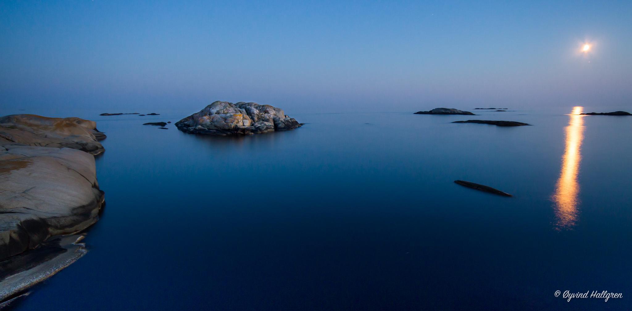 Blue night by Hallgren