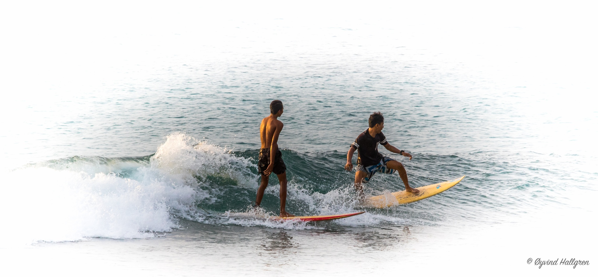 Surfing boys by Hallgren