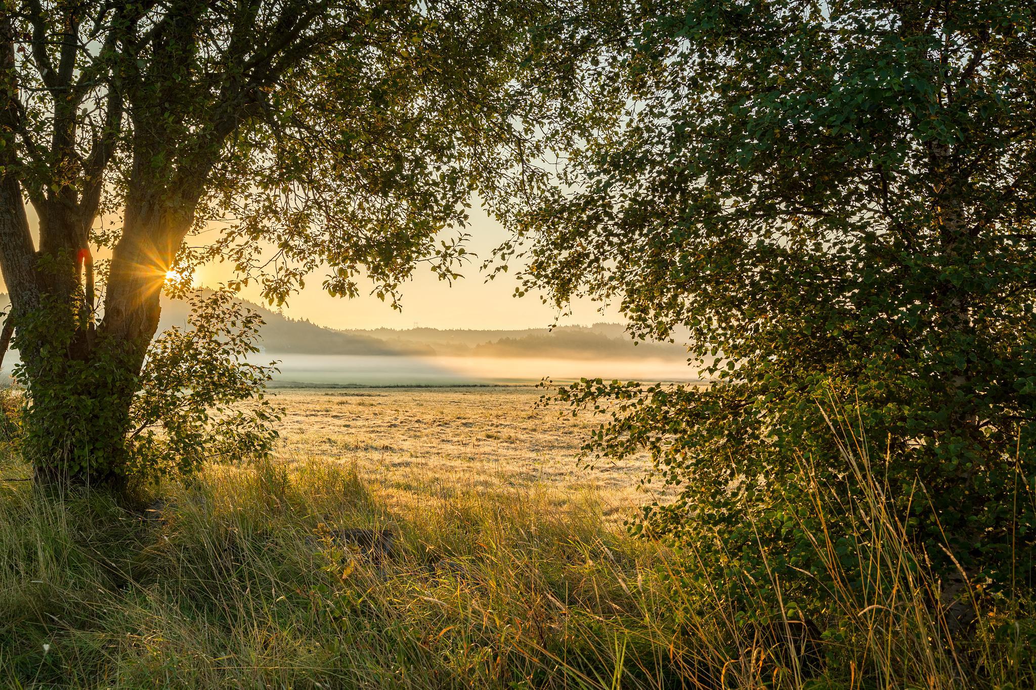 Sunrise #3 by JRoest