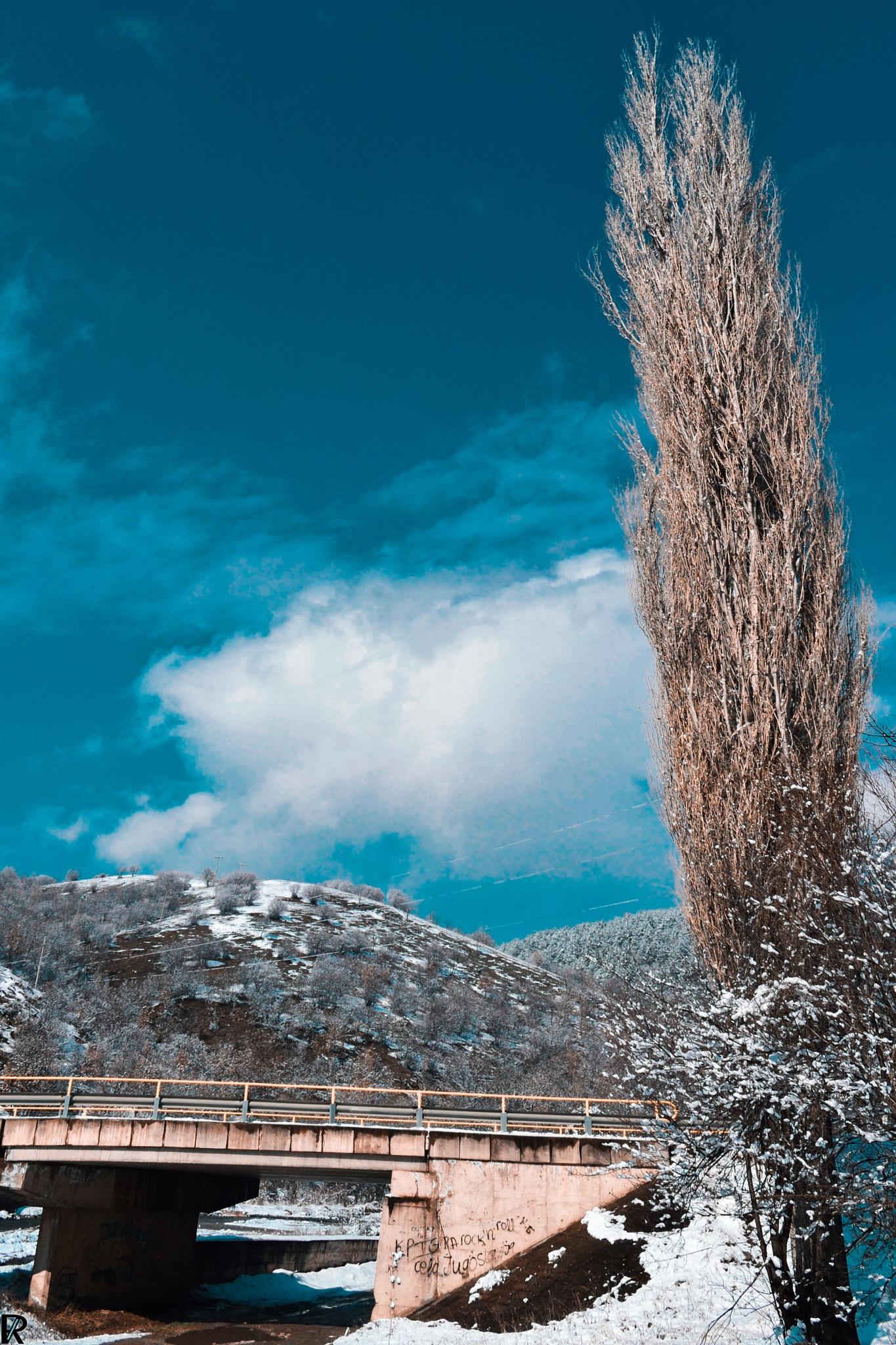Winter in Kriva Palanka, Macedonia (7) by Robert Krstevski