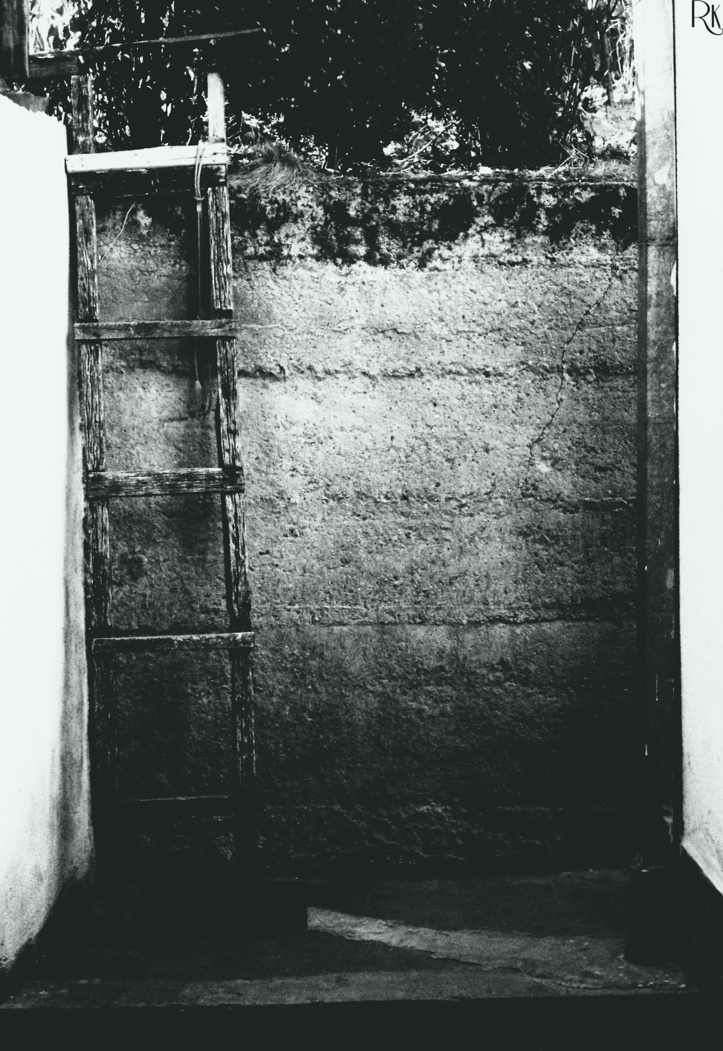 Wooden Ladder by Robert Krstevski
