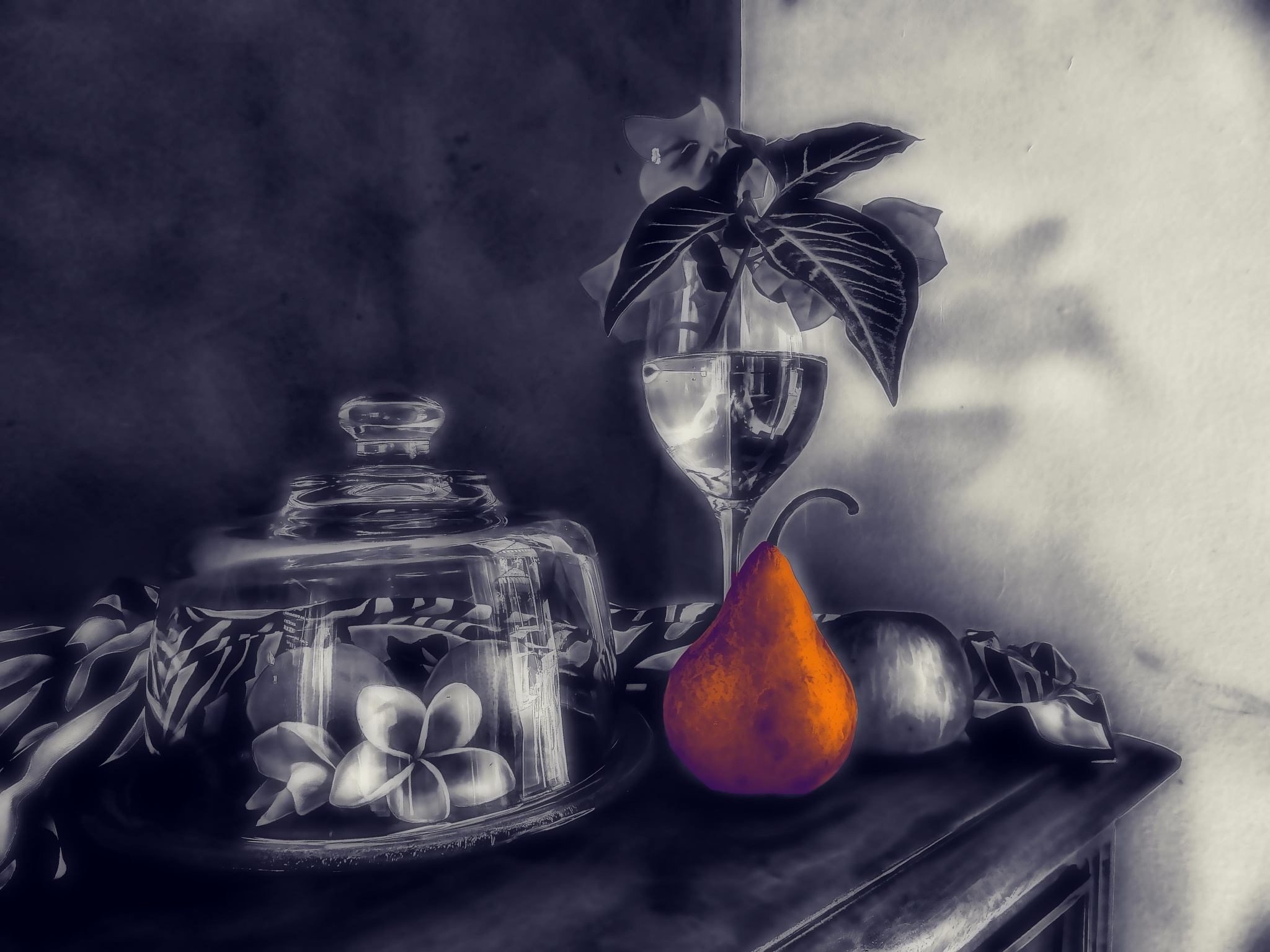 Still life 9 by DanicaD
