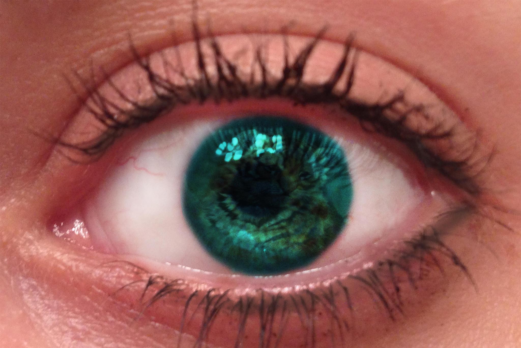 Eye Of The Tiger by 1jaxx2