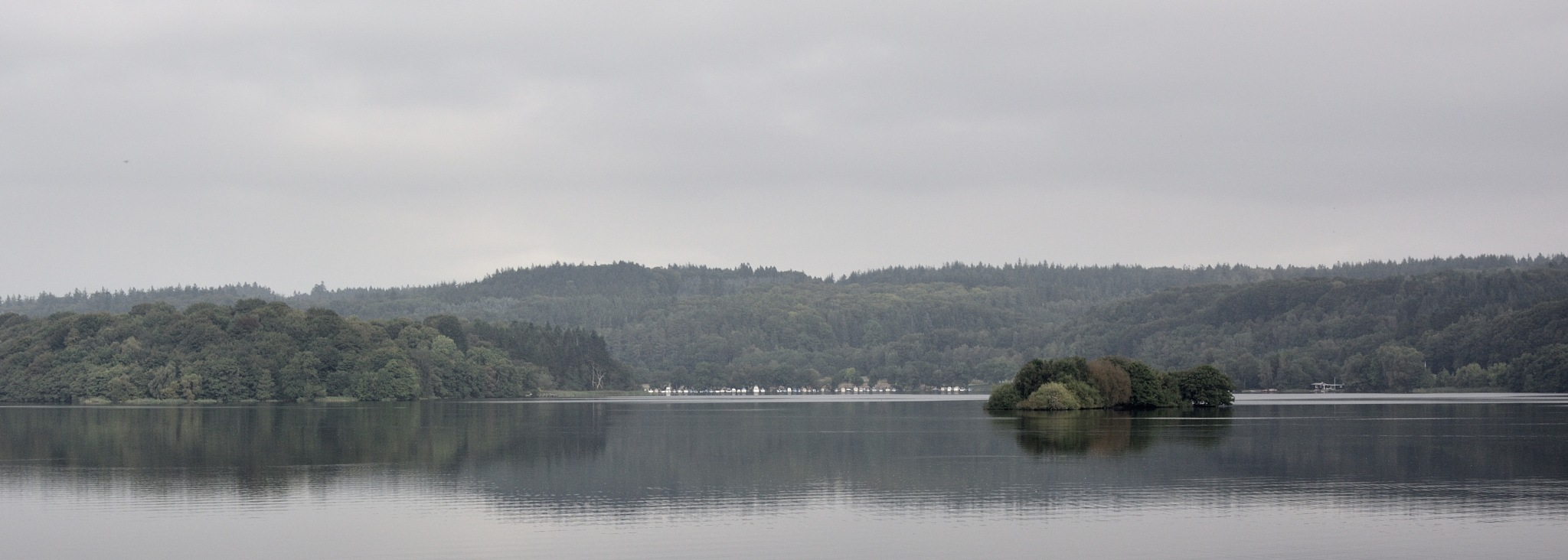 gray scale at the lake by Poul-Erik Riis