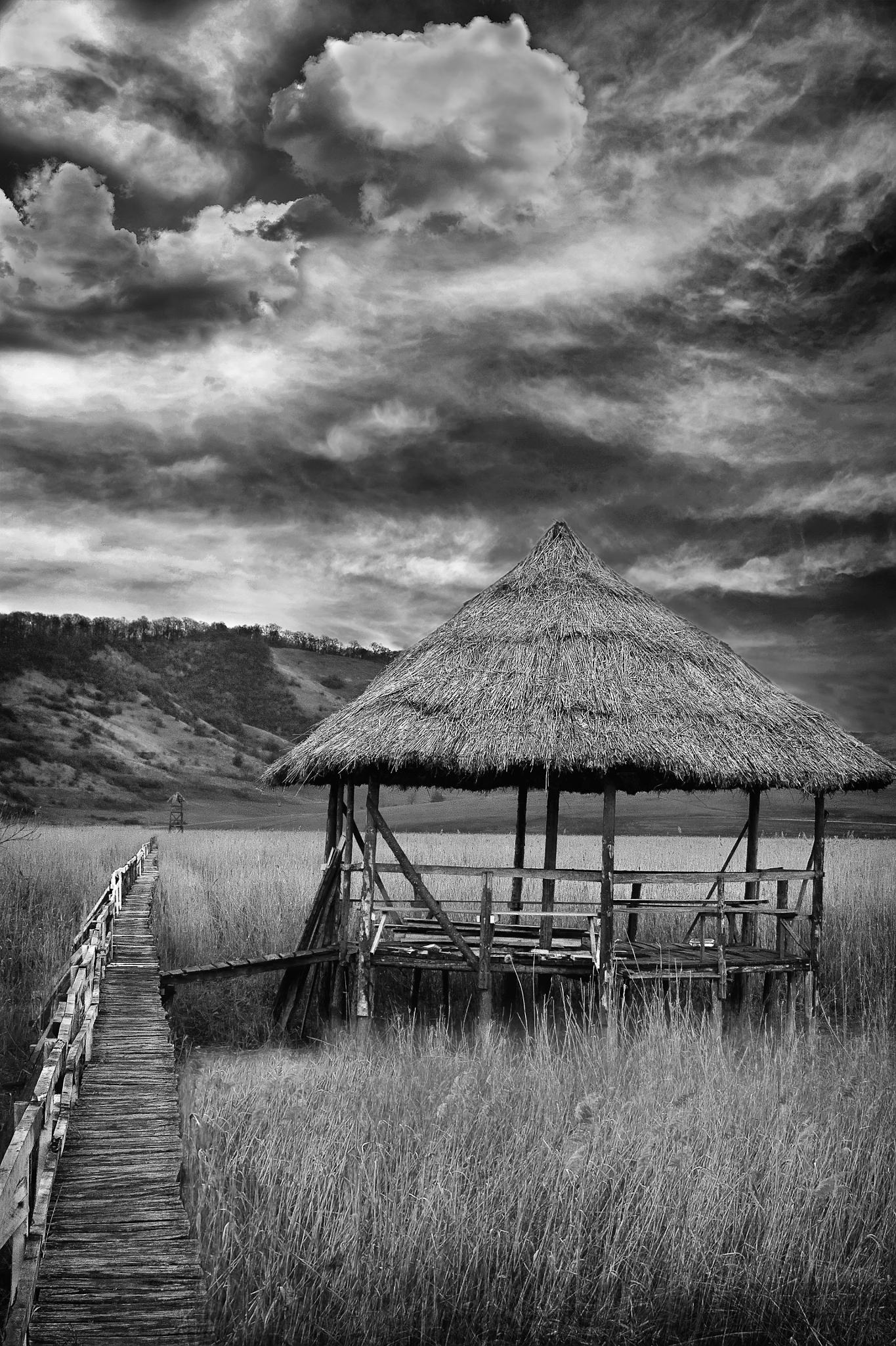 Through the Marshes by Flaviu Salagean