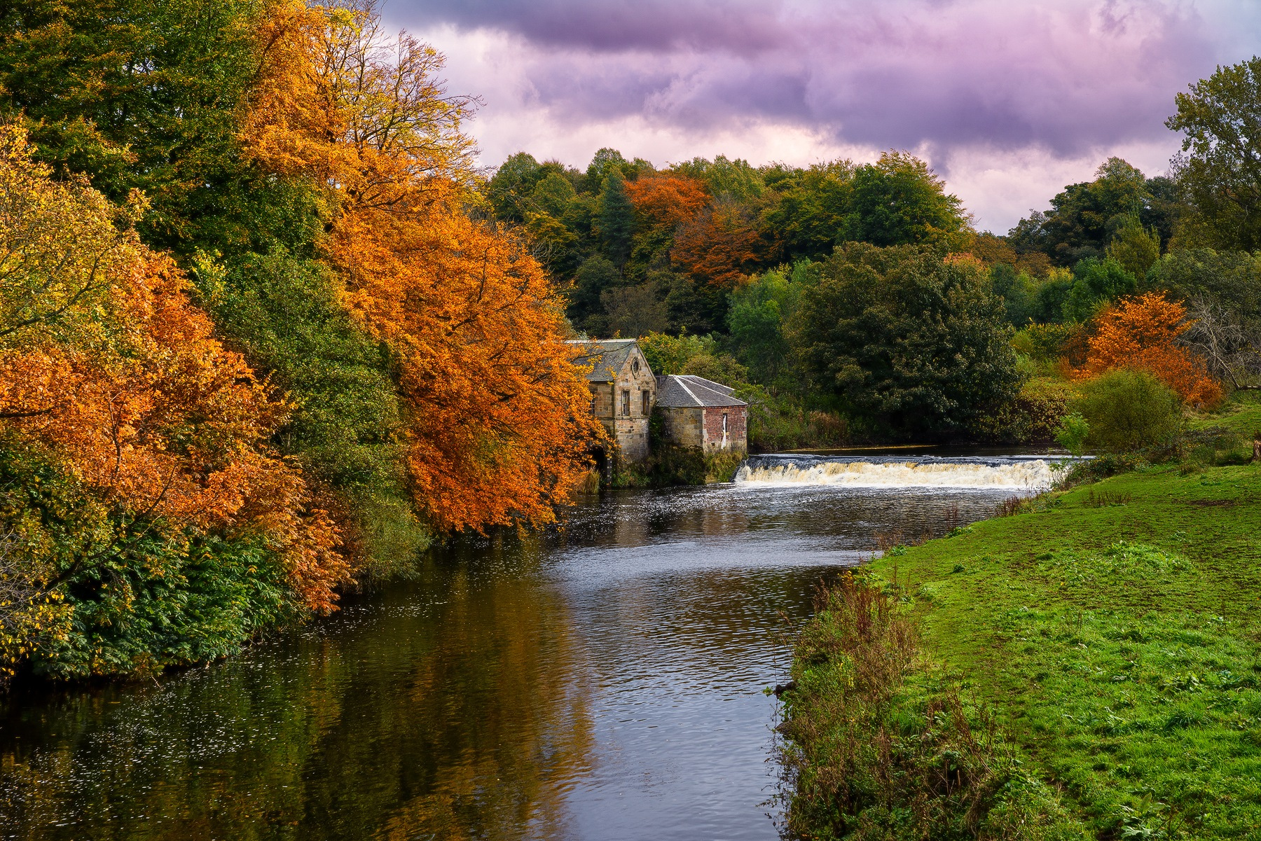 Autumn on the river Cart by Douglas Ritchie