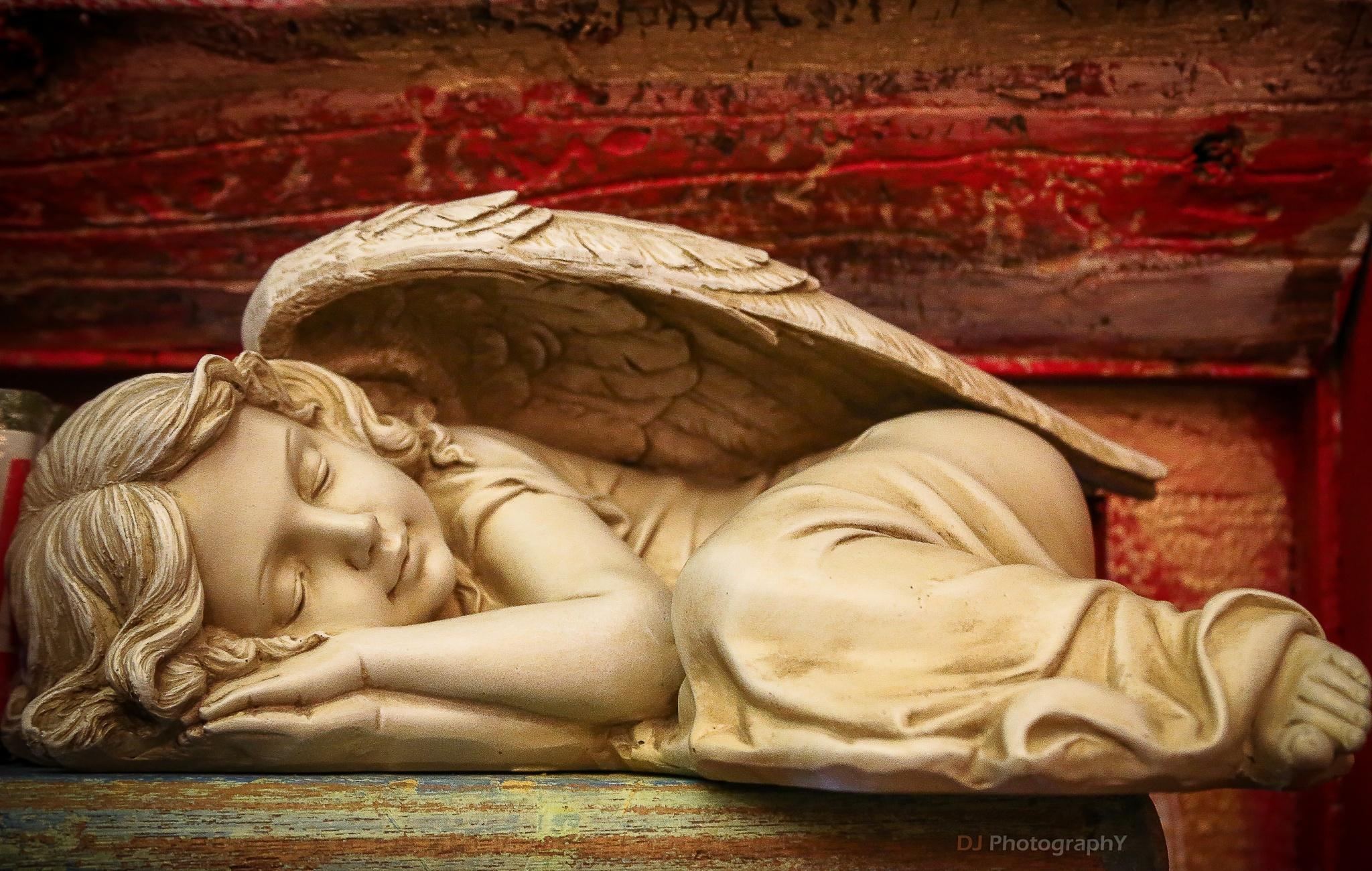 Sleeping Beauty by Dinesh kumar Jayapal