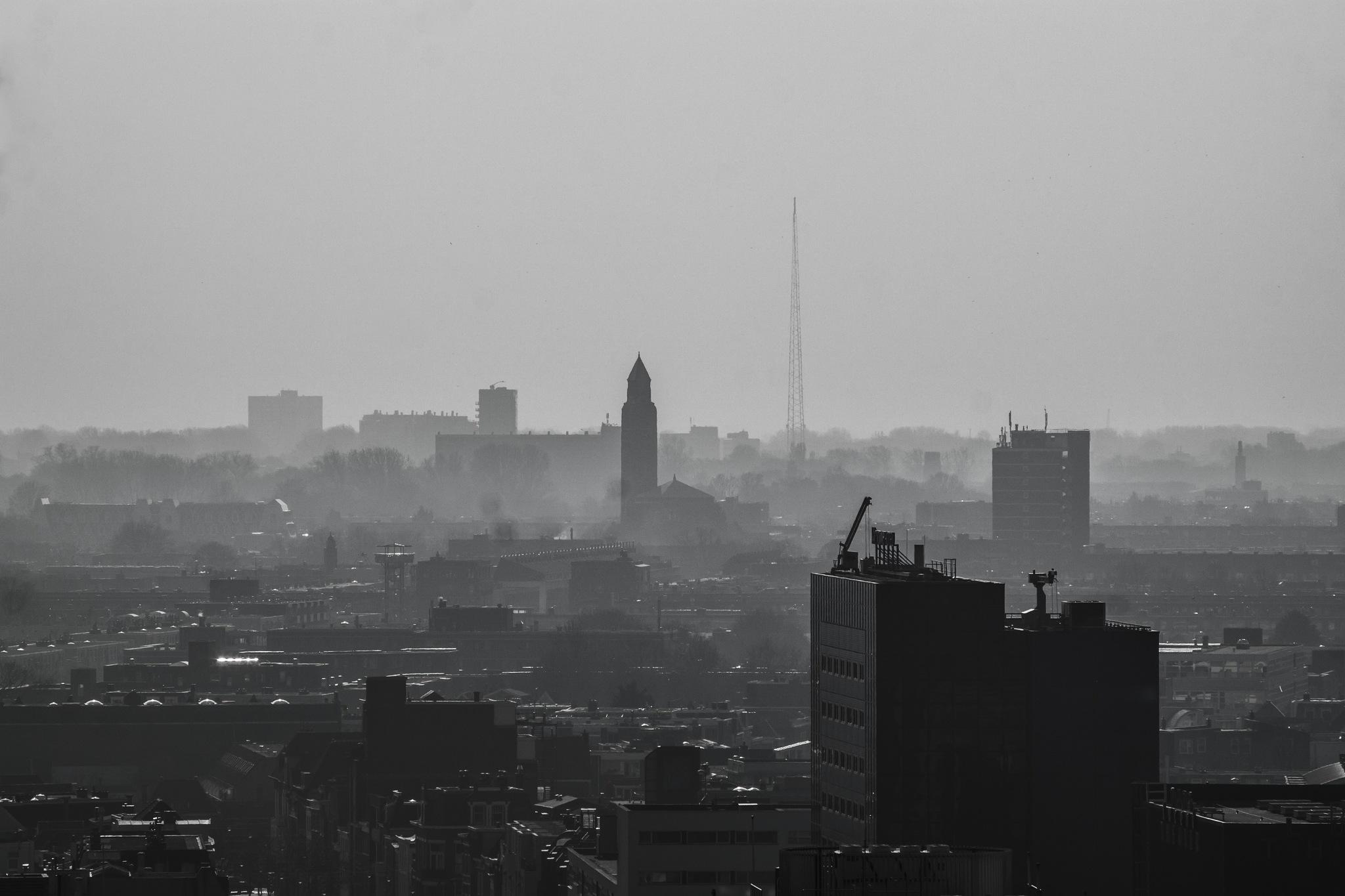 Foggy day by DavidZisky