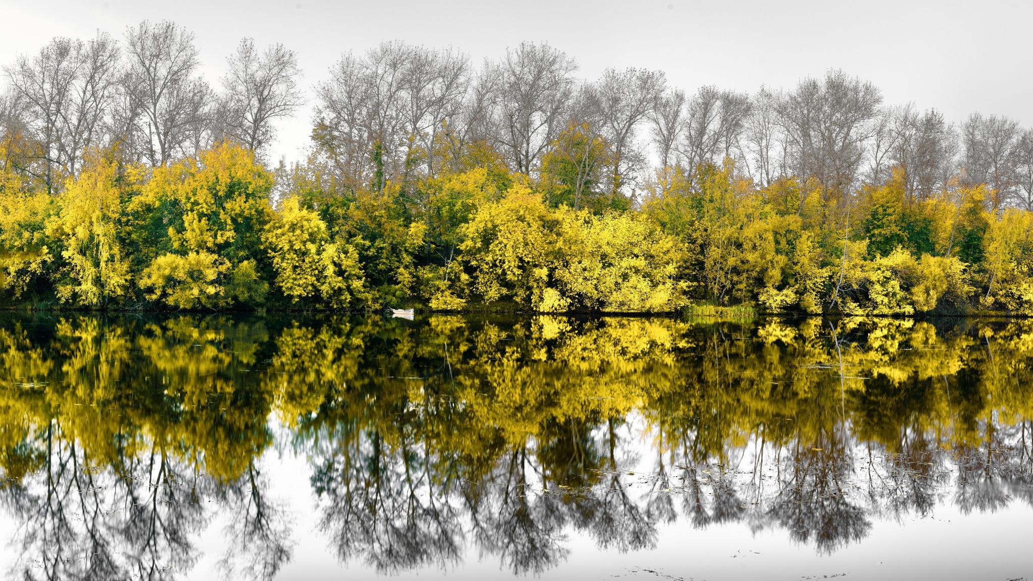Autumn mirror by Roman Alyabev