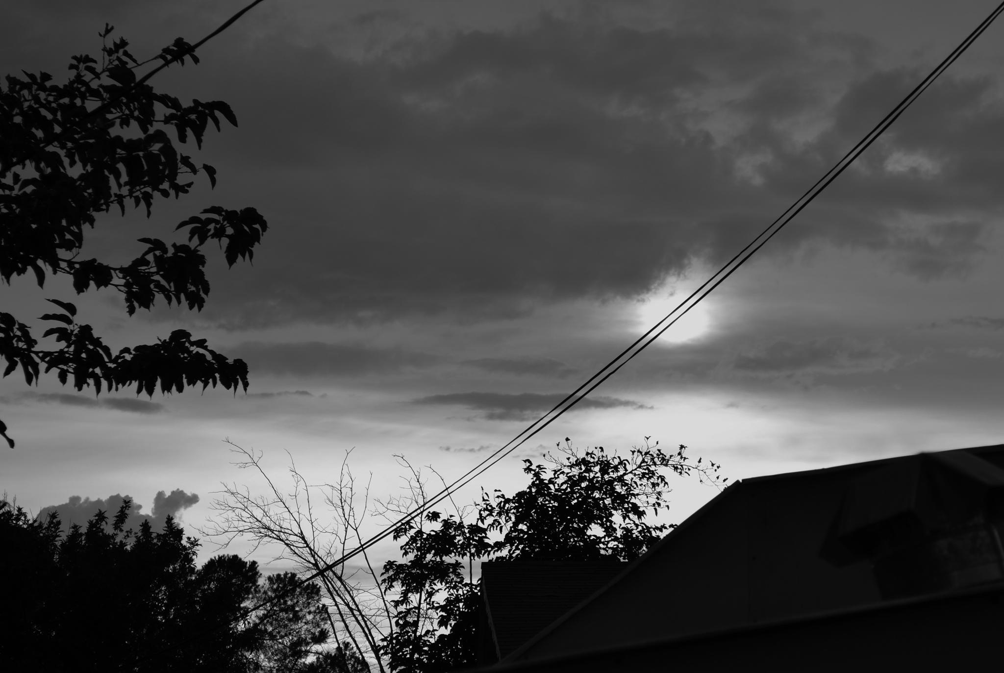 Stormy by Linda Masanimptewa
