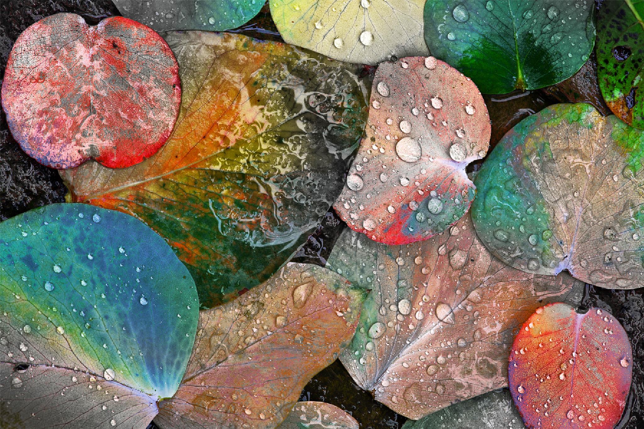 autumn in Pandora by GeorgeVeltchev
