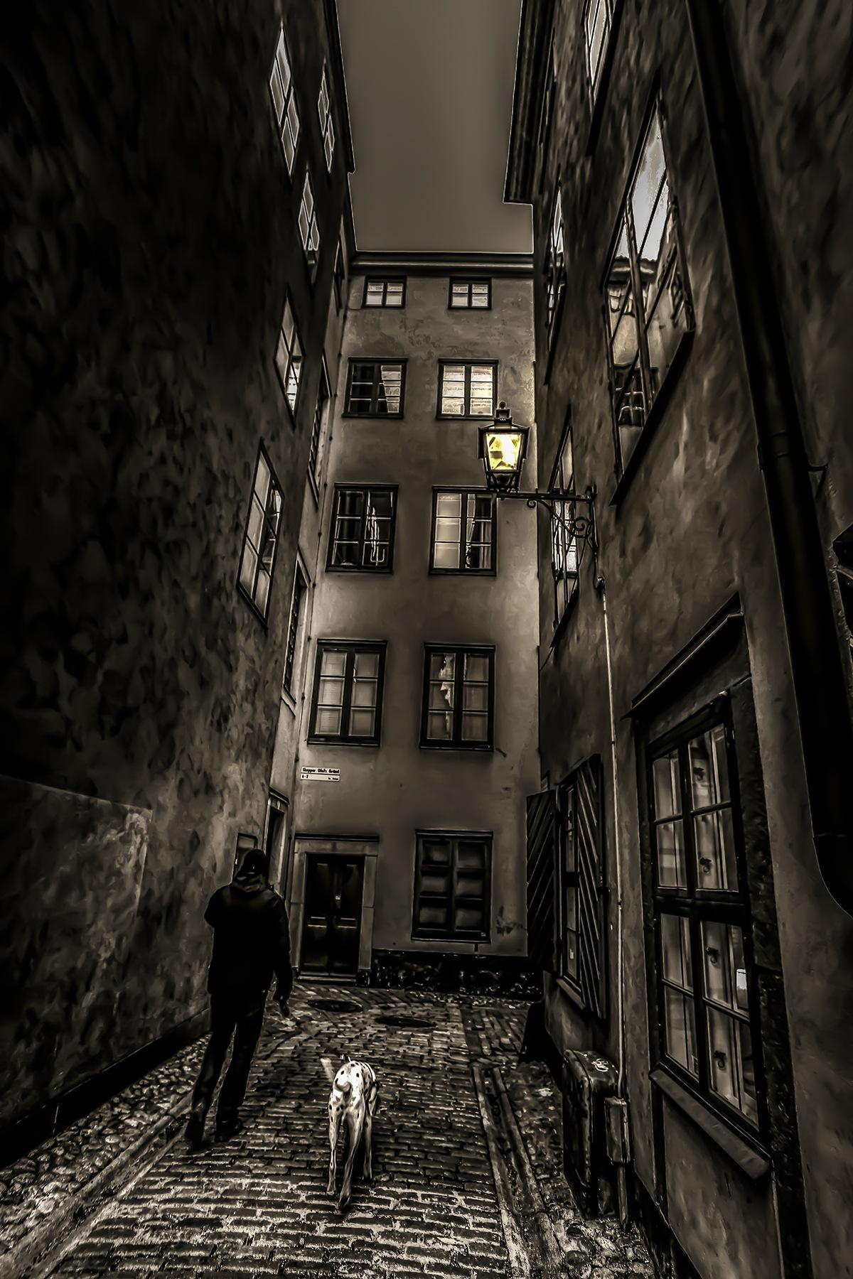 =- by SergeyBelyaev