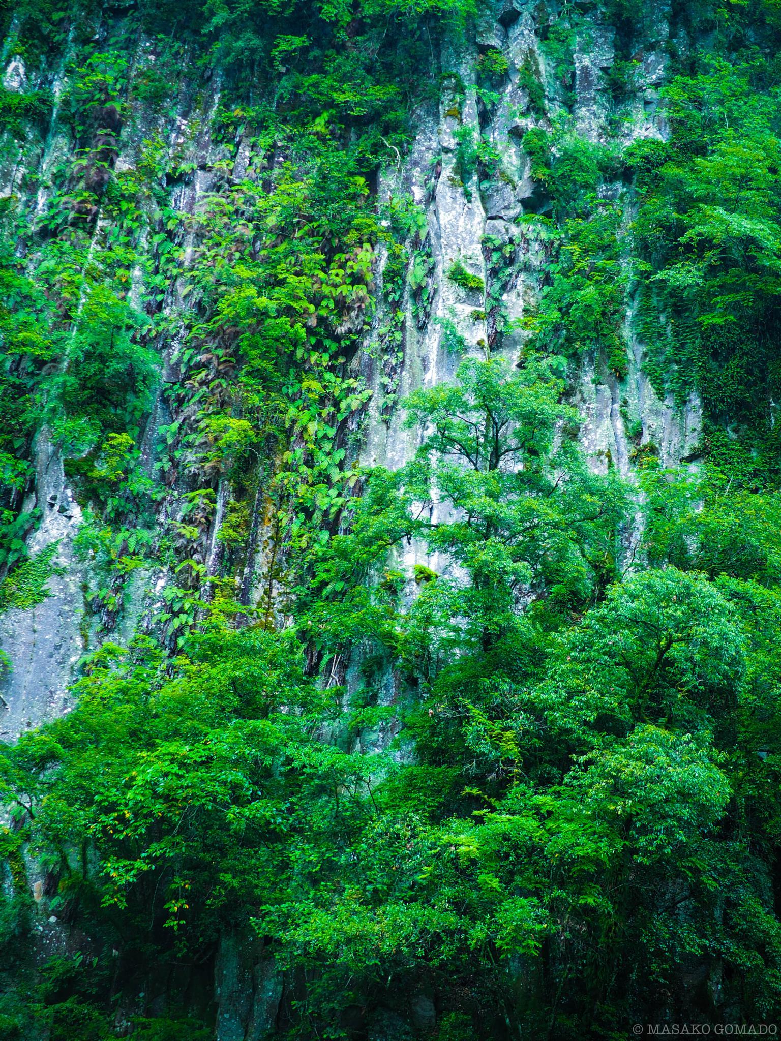 steep cliff by Masako Gomado