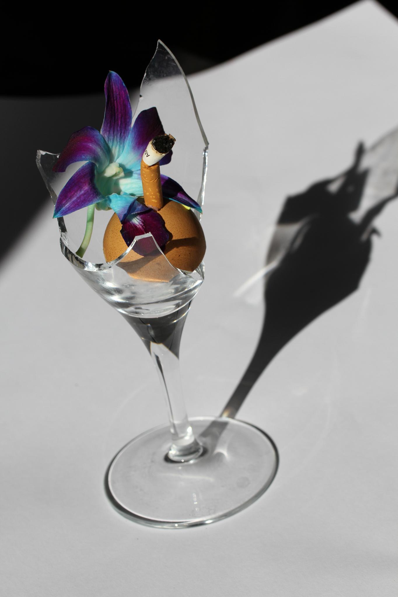 Cocktail Death  by Filipe Calcagno