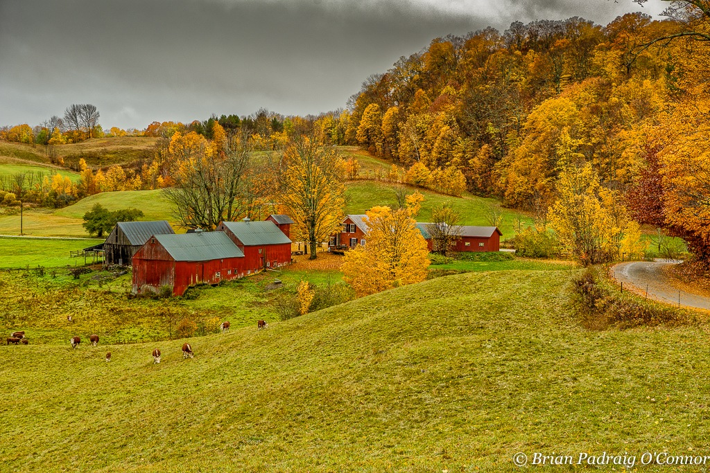 Jenne Farm by Brian Padraig O'Connor