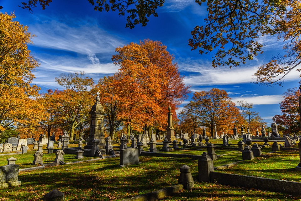 Fall amongst the Satues by Brian Padraig O'Connor