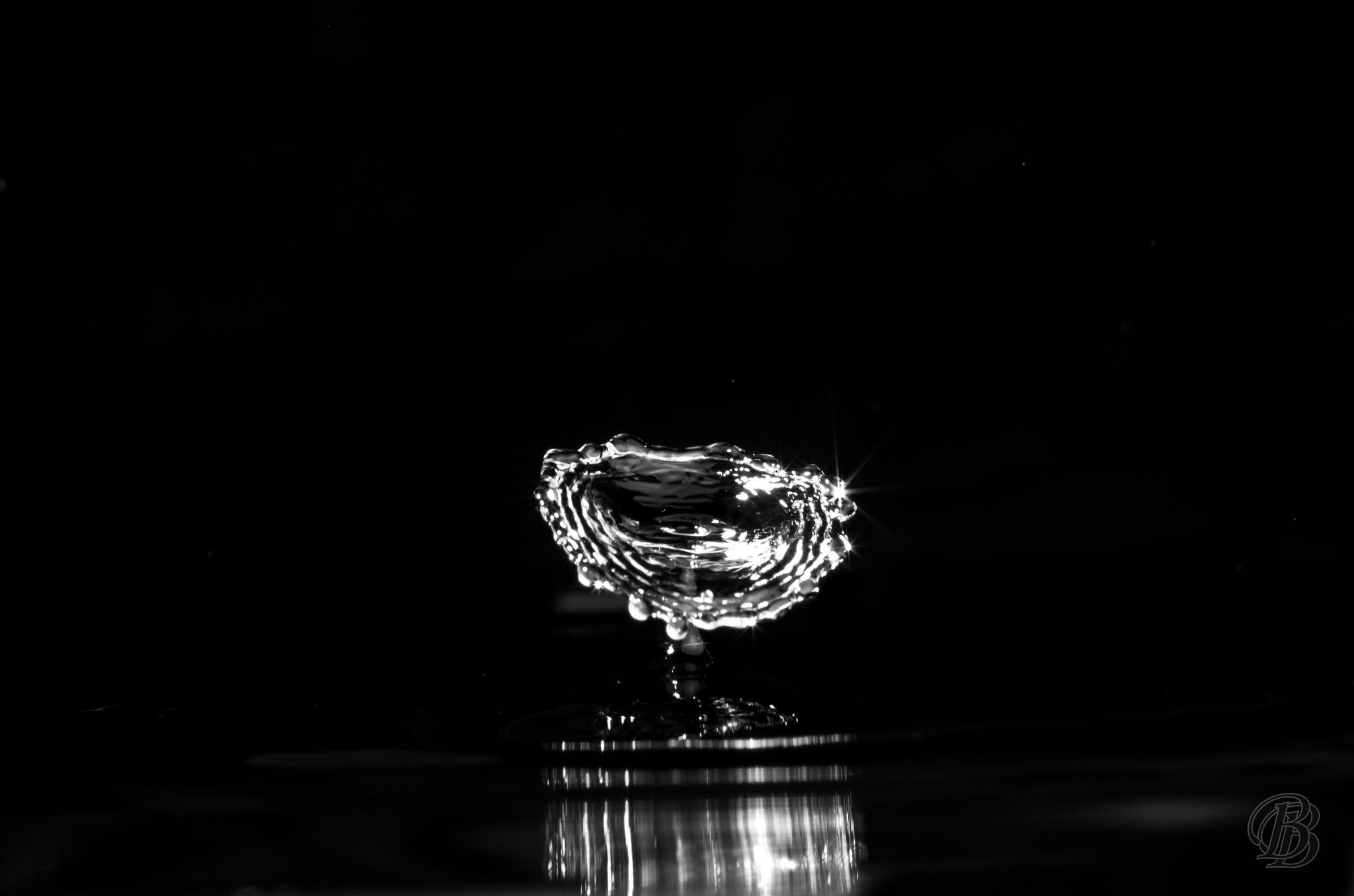 drops in b&w by BorisLinder