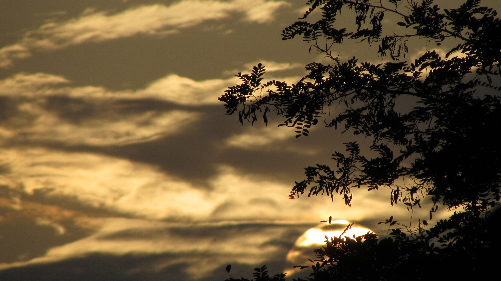 Sunset by Isabel Gonzalez Martil