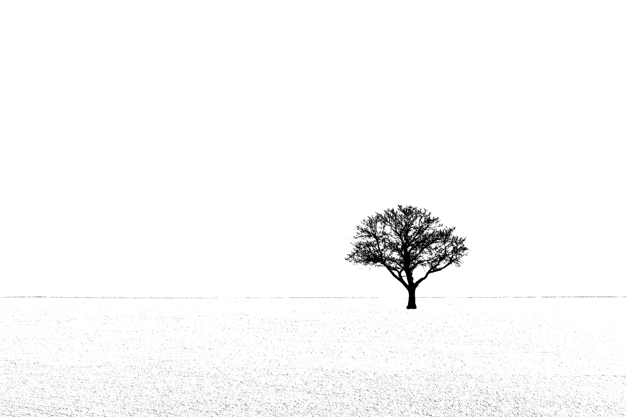 Solitair by AdolfBeck